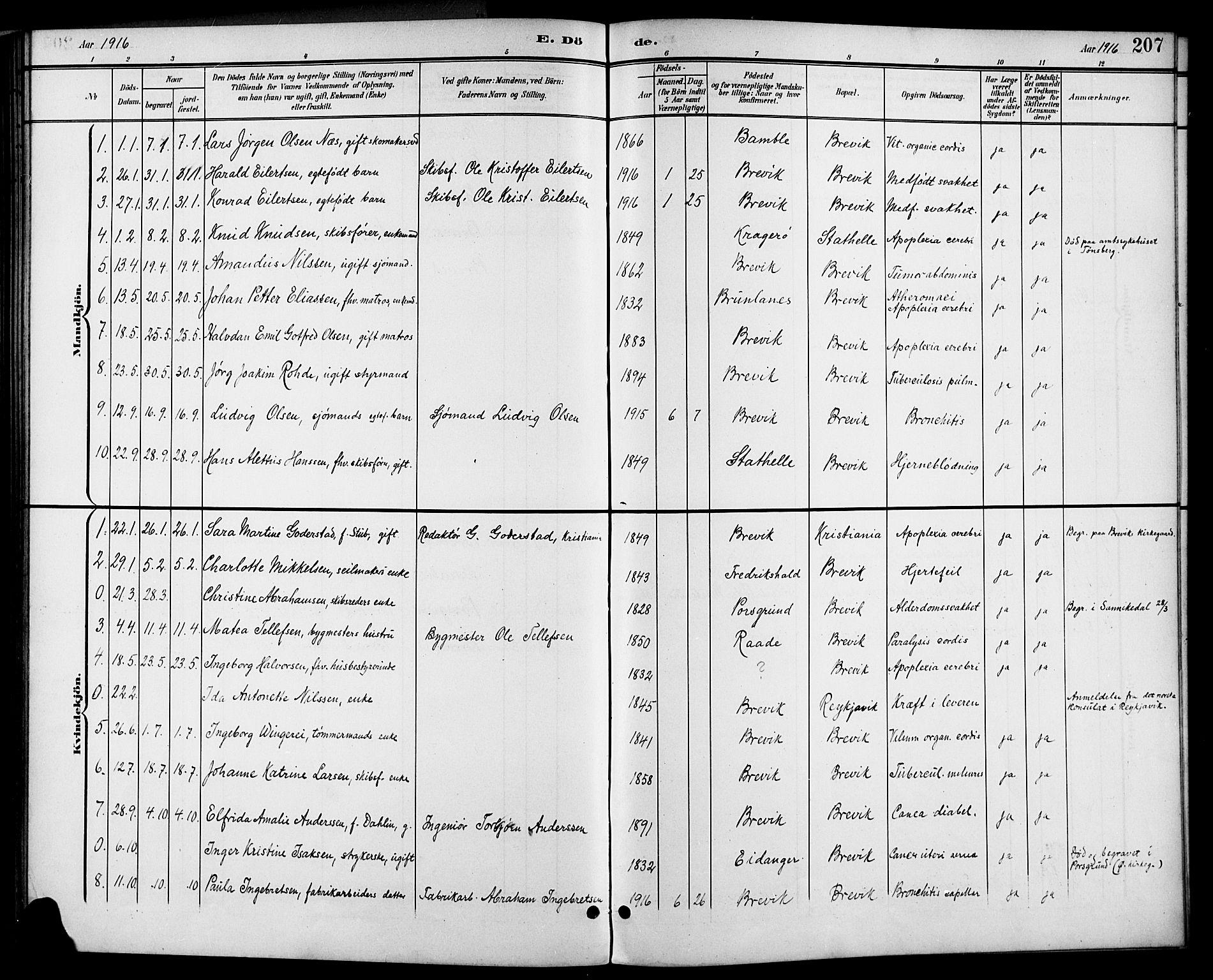 SAKO, Brevik kirkebøker, G/Ga/L0005: Klokkerbok nr. 5, 1901-1924, s. 207