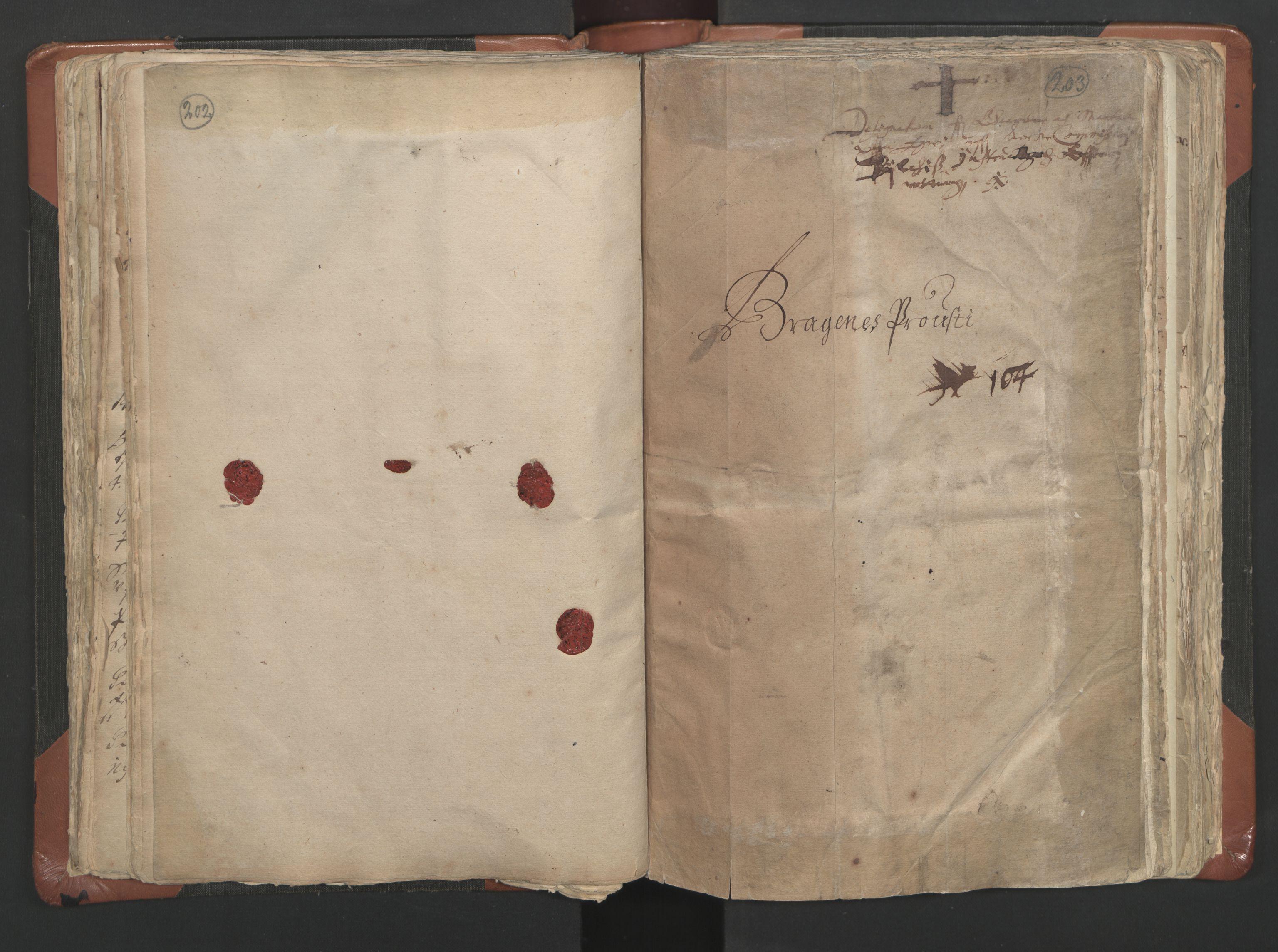 RA, Sogneprestenes manntall 1664-1666, nr. 9: Bragernes prosti, 1664-1666, s. 202-203