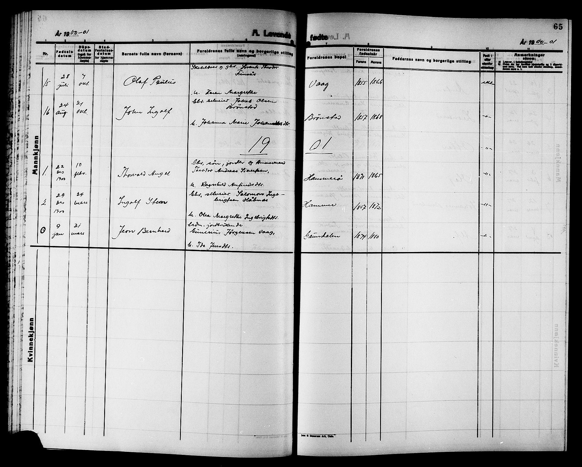 SAT, Ministerialprotokoller, klokkerbøker og fødselsregistre - Nord-Trøndelag, 749/L0487: Ministerialbok nr. 749D03, 1887-1902, s. 65