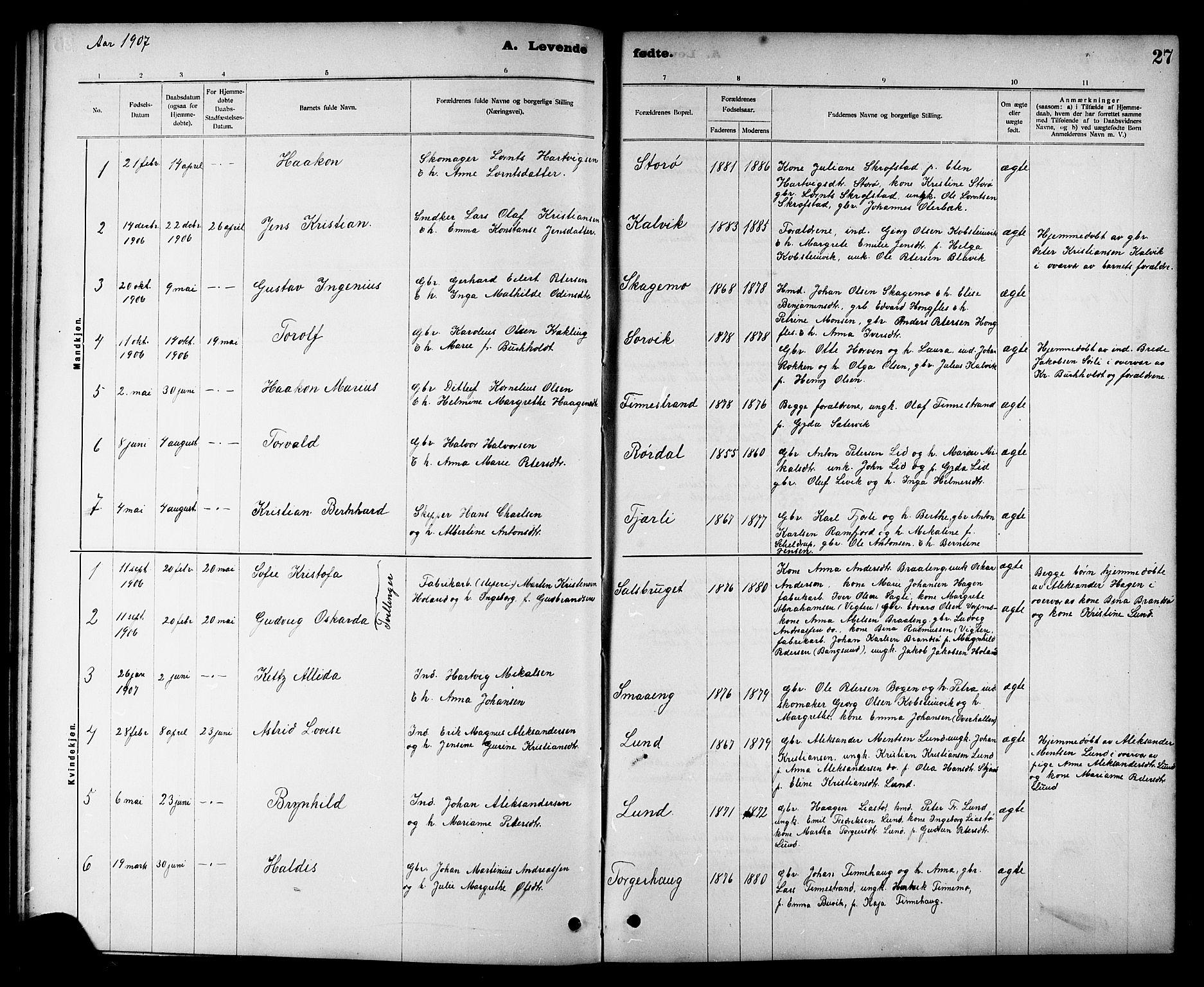 SAT, Ministerialprotokoller, klokkerbøker og fødselsregistre - Nord-Trøndelag, 780/L0652: Klokkerbok nr. 780C04, 1899-1911, s. 27