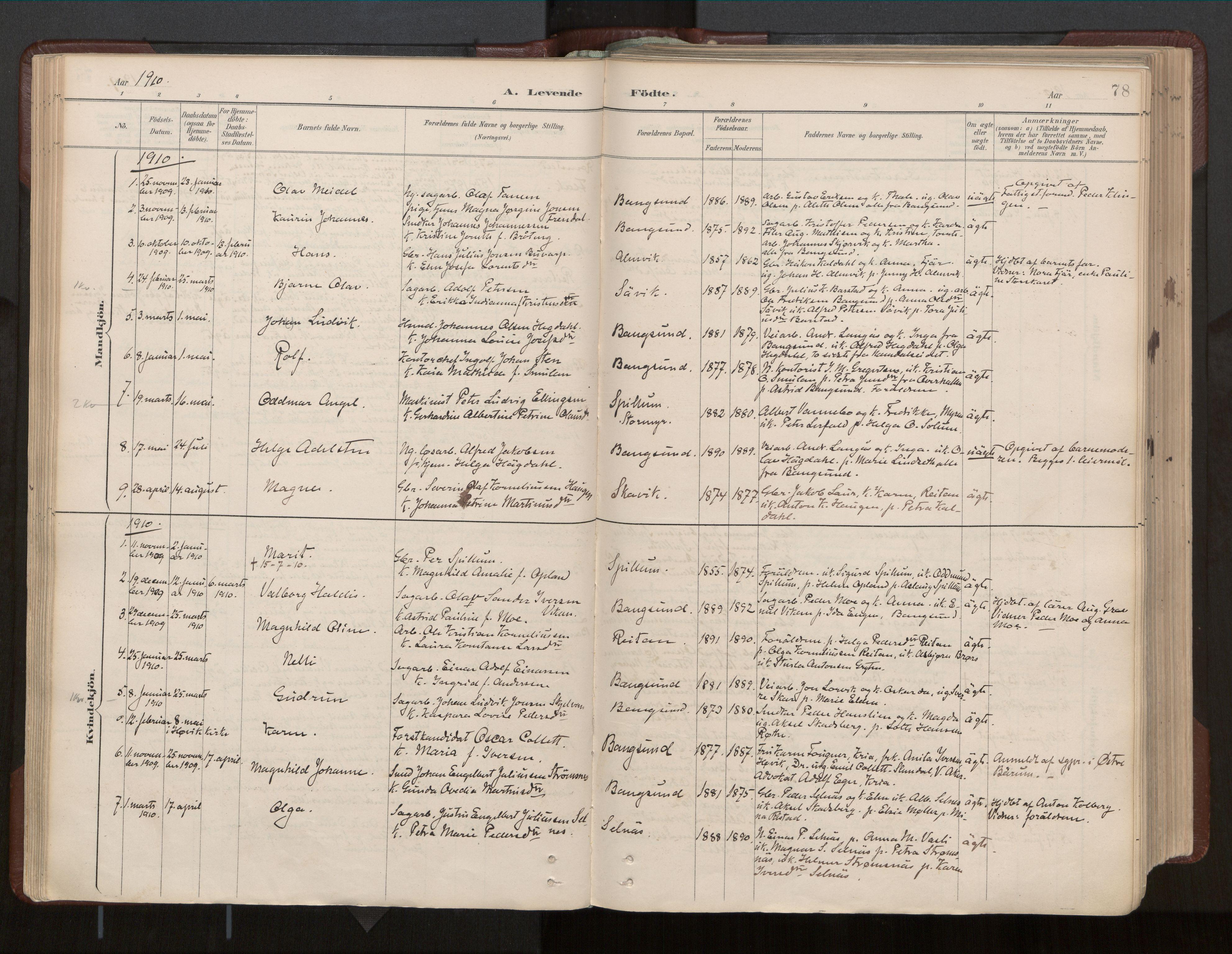 SAT, Ministerialprotokoller, klokkerbøker og fødselsregistre - Nord-Trøndelag, 770/L0589: Ministerialbok nr. 770A03, 1887-1929, s. 78