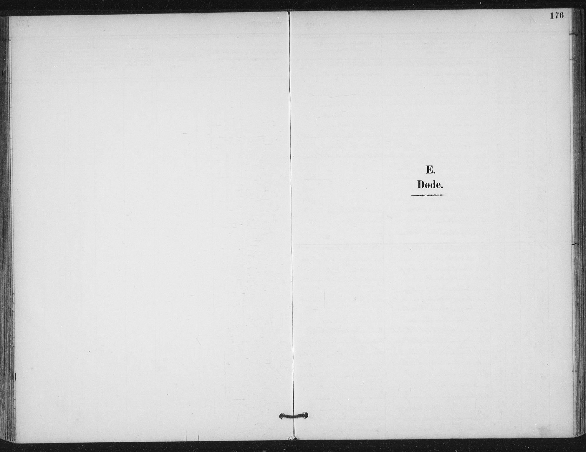 SAT, Ministerialprotokoller, klokkerbøker og fødselsregistre - Møre og Romsdal, 529/L0457: Ministerialbok nr. 529A07, 1894-1903, s. 176