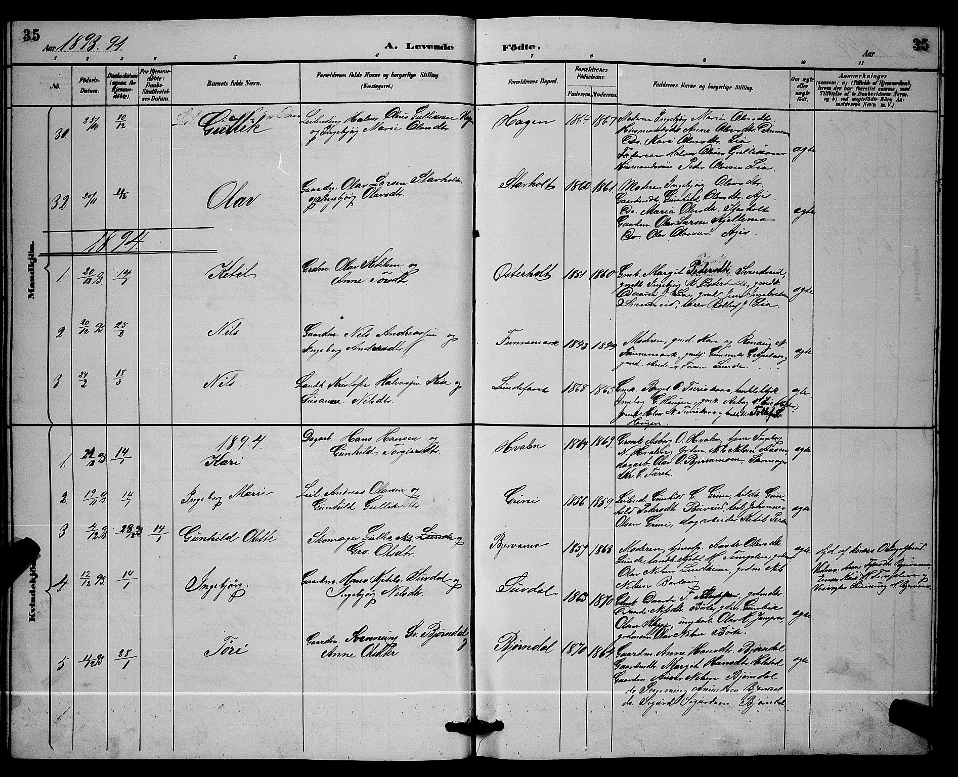 SAKO, Lunde kirkebøker, G/Ga/L0002: Klokkerbok nr. I 2, 1887-1896, s. 35
