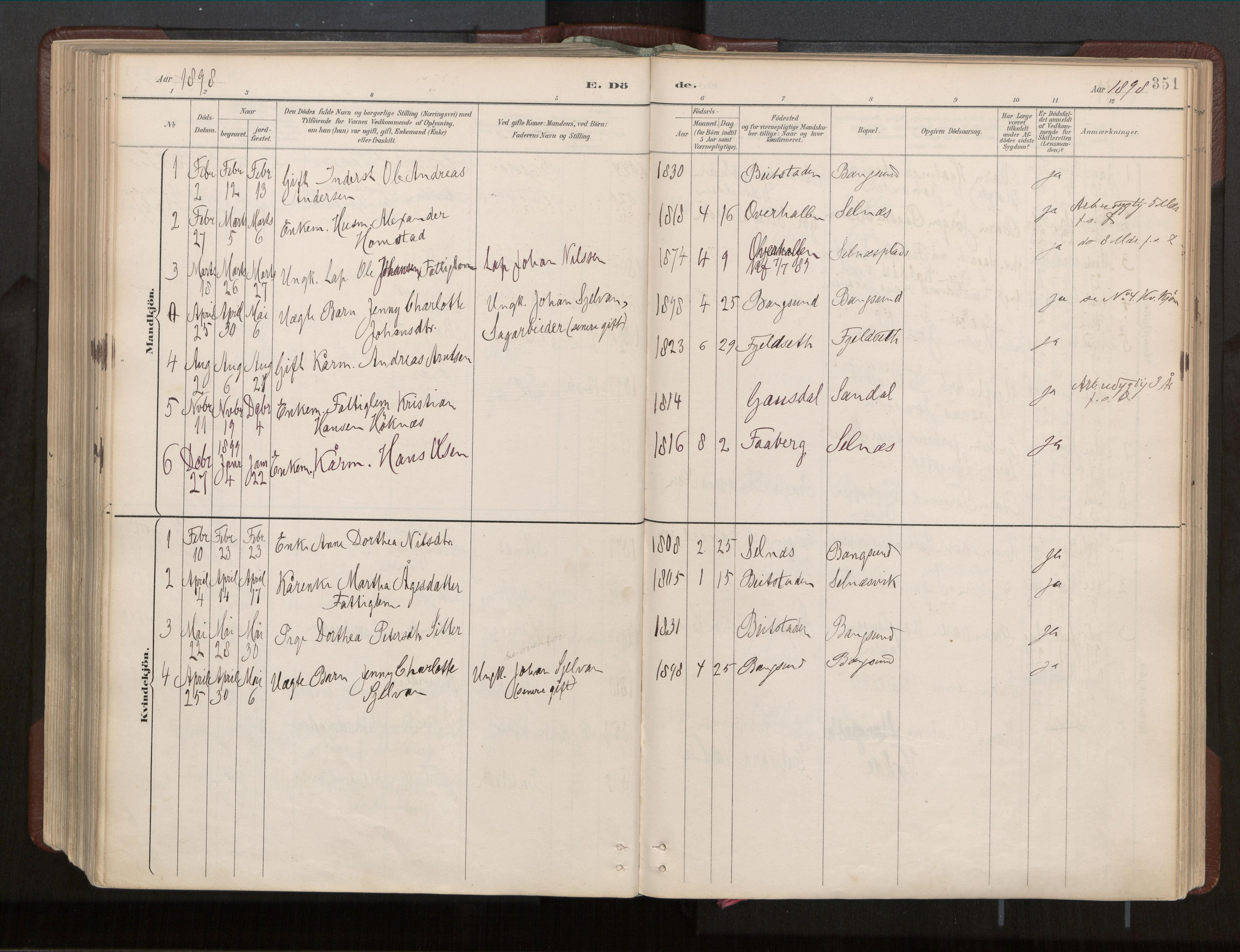 SAT, Ministerialprotokoller, klokkerbøker og fødselsregistre - Nord-Trøndelag, 770/L0589: Ministerialbok nr. 770A03, 1887-1929, s. 351