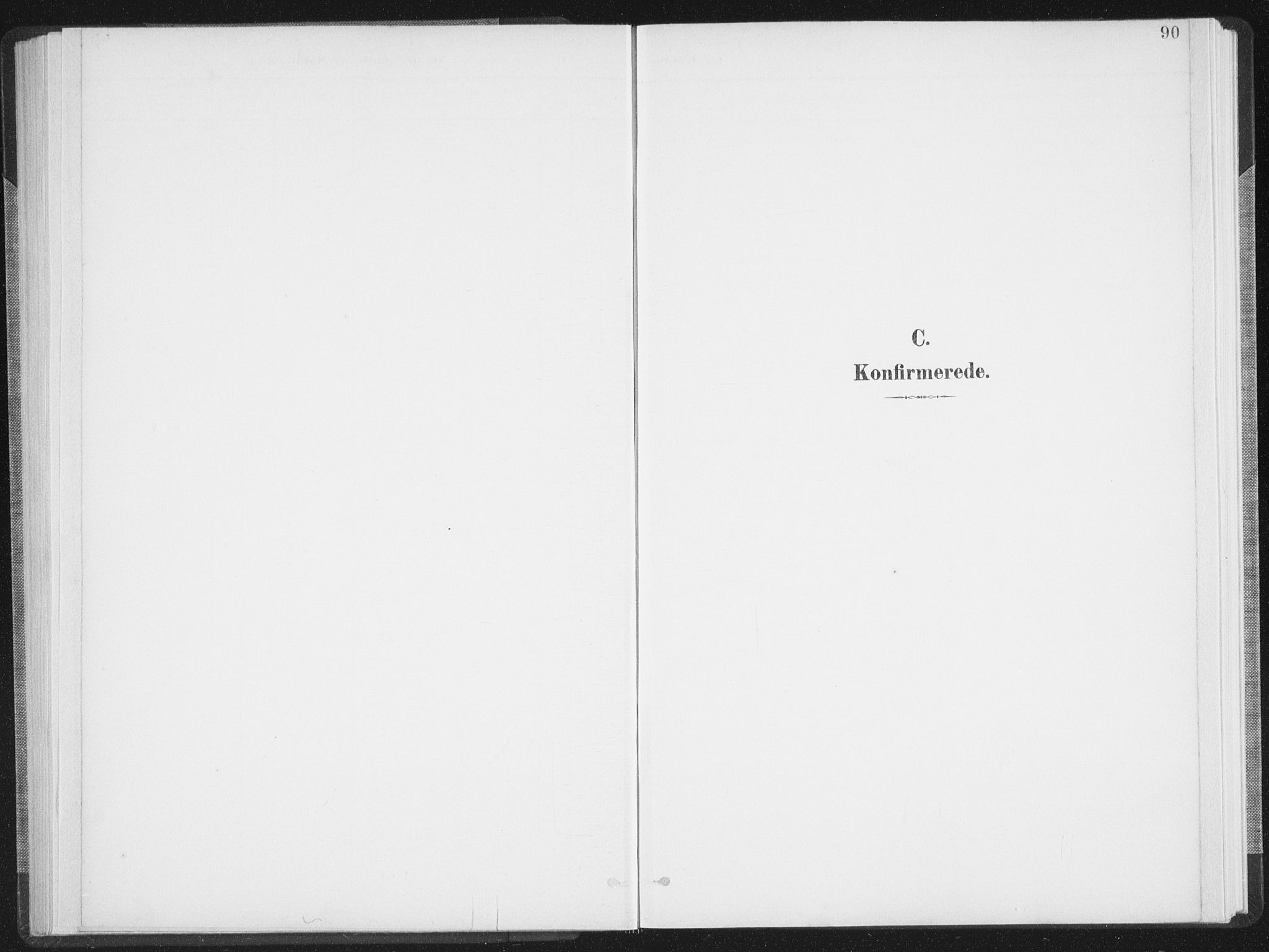 SAT, Ministerialprotokoller, klokkerbøker og fødselsregistre - Nordland, 897/L1400: Ministerialbok nr. 897A07, 1897-1908, s. 90