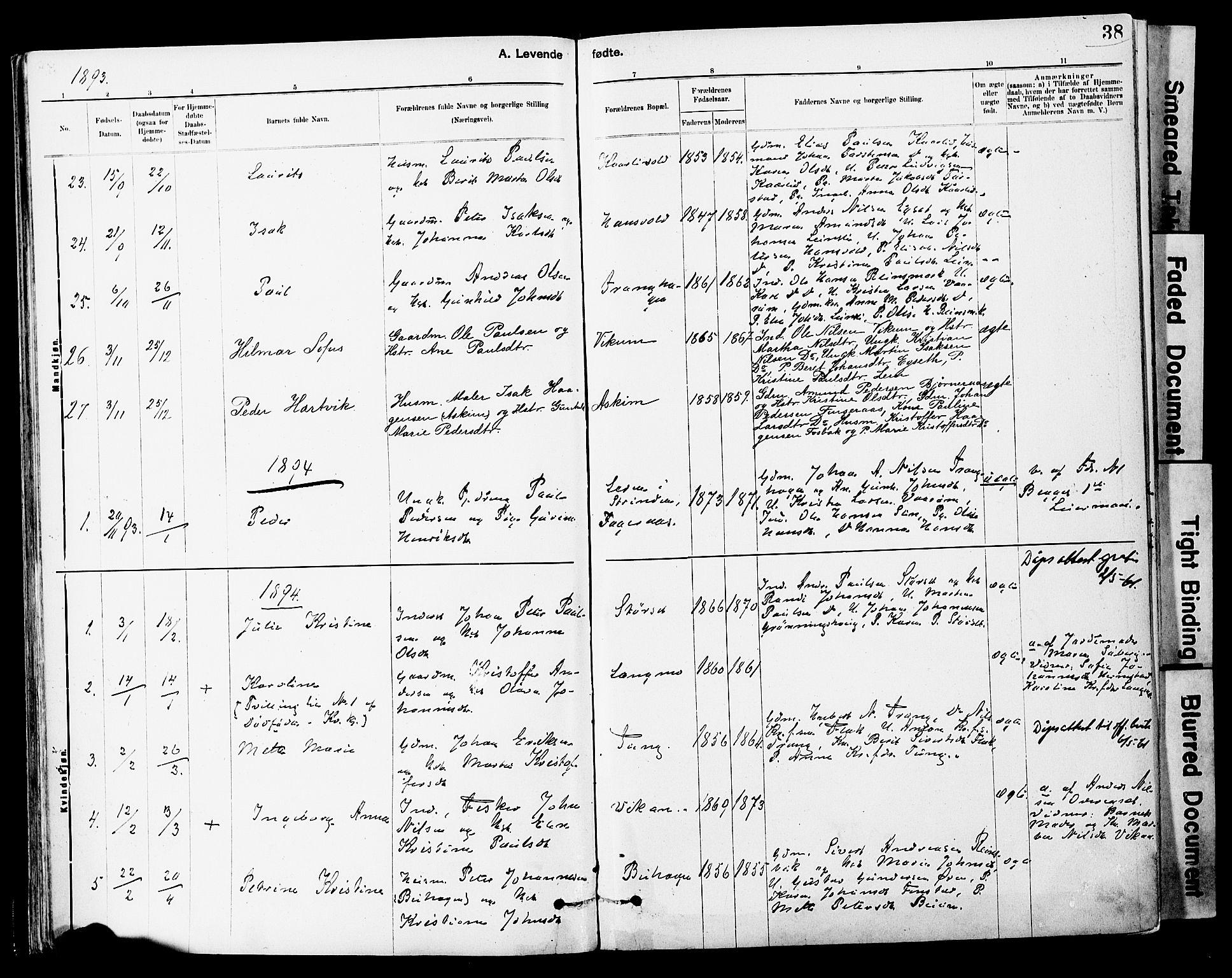 SAT, Ministerialprotokoller, klokkerbøker og fødselsregistre - Sør-Trøndelag, 646/L0615: Ministerialbok nr. 646A13, 1885-1900, s. 38