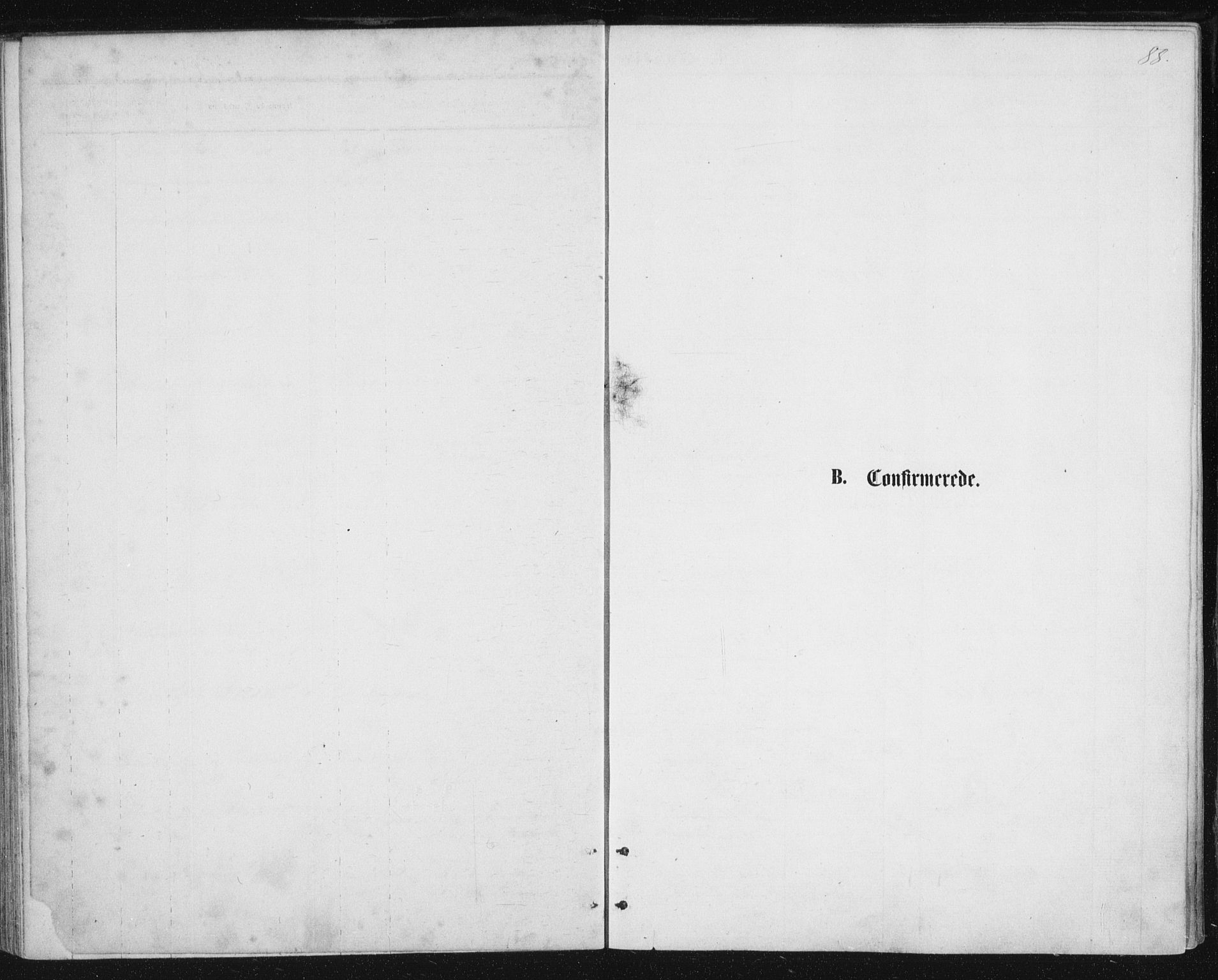 SAT, Ministerialprotokoller, klokkerbøker og fødselsregistre - Nordland, 888/L1243: Ministerialbok nr. 888A09, 1876-1879, s. 88
