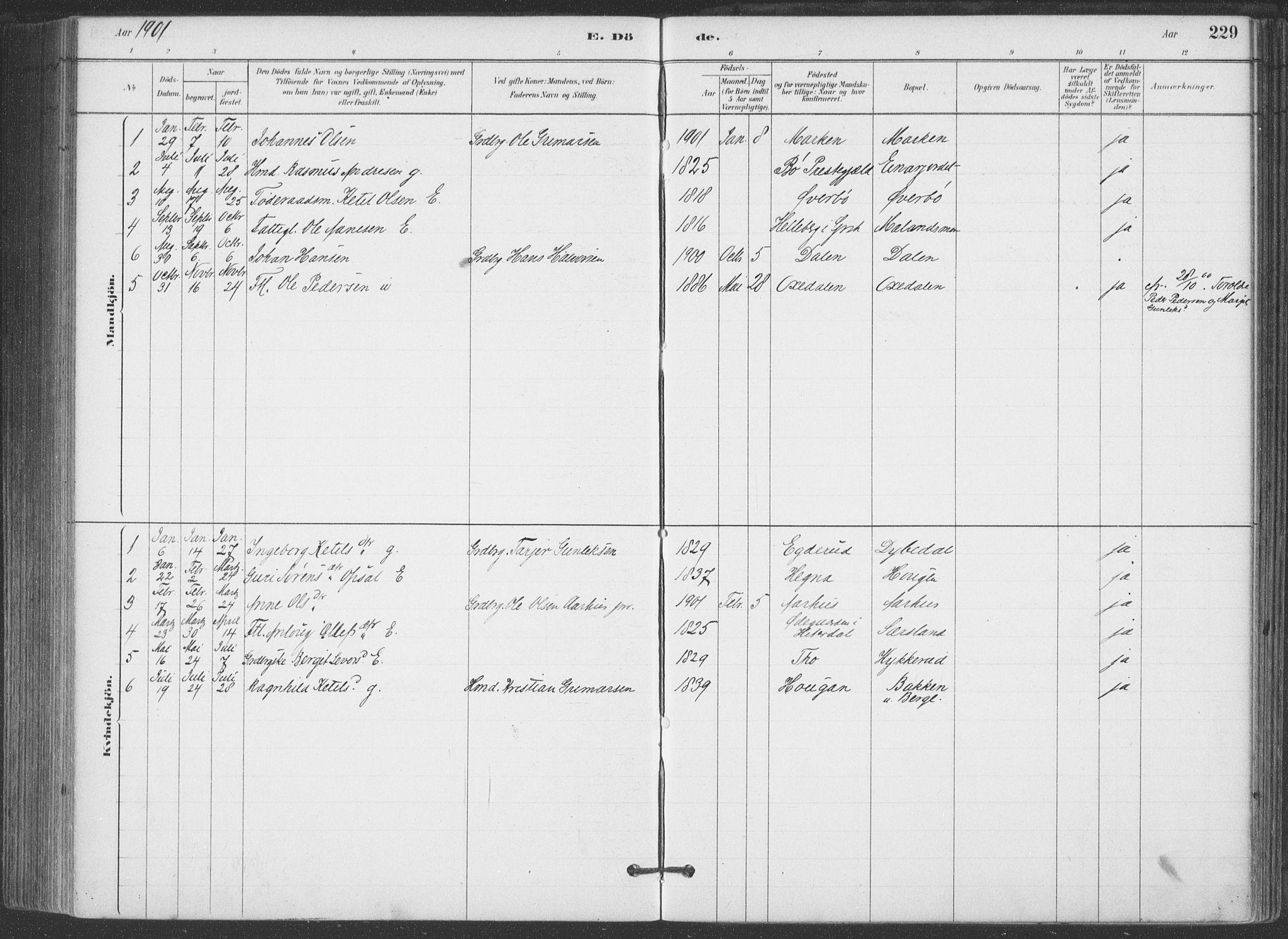 SAKO, Hjartdal kirkebøker, F/Fa/L0010: Ministerialbok nr. I 10, 1880-1929, s. 229