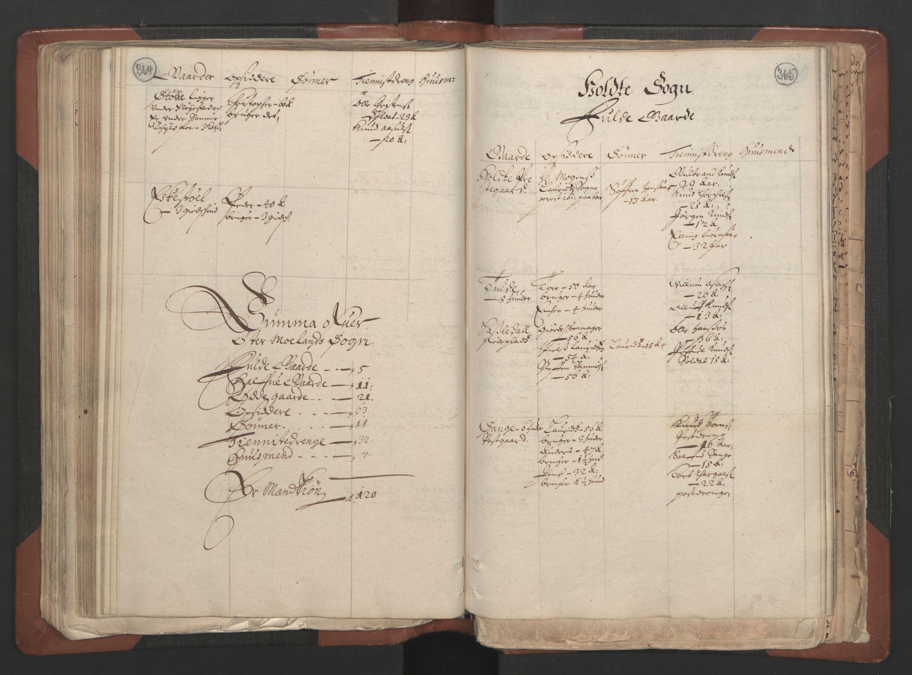 RA, Fogdenes og sorenskrivernes manntall 1664-1666, nr. 7: Nedenes fogderi, 1664-1666, s. 364-365