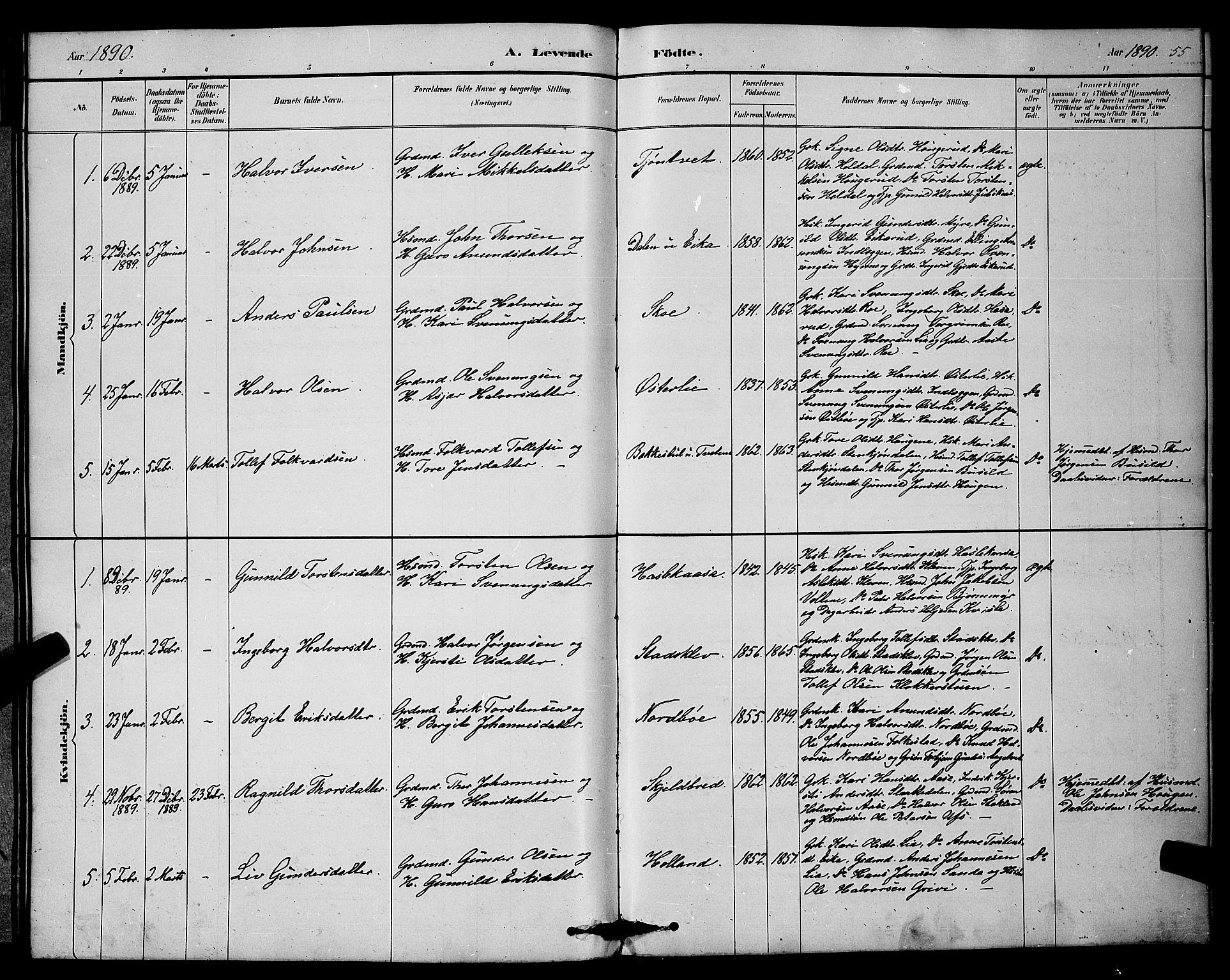 SAKO, Bø kirkebøker, G/Ga/L0005: Klokkerbok nr. 5, 1883-1897, s. 55