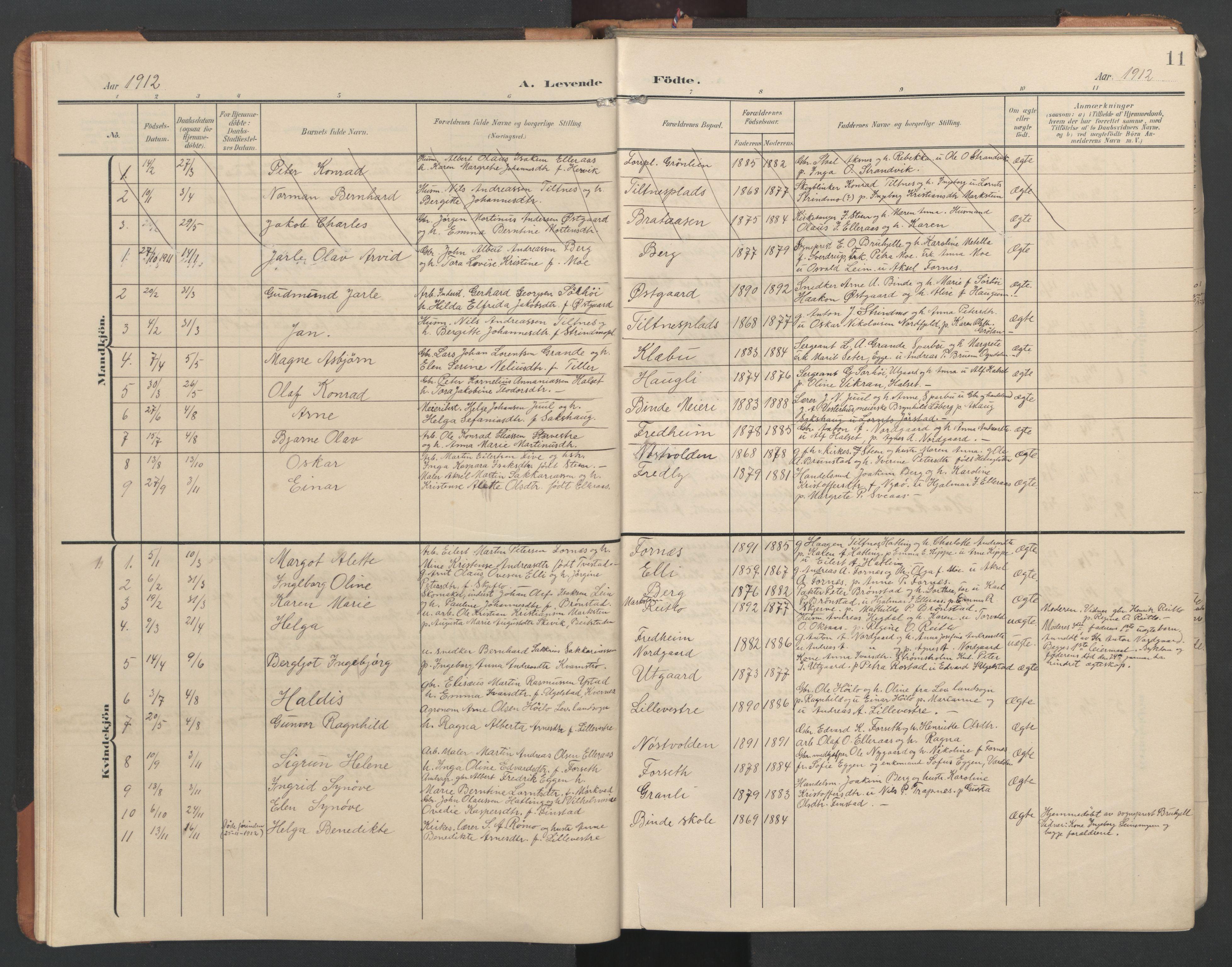 SAT, Ministerialprotokoller, klokkerbøker og fødselsregistre - Nord-Trøndelag, 746/L0455: Klokkerbok nr. 746C01, 1908-1933, s. 11