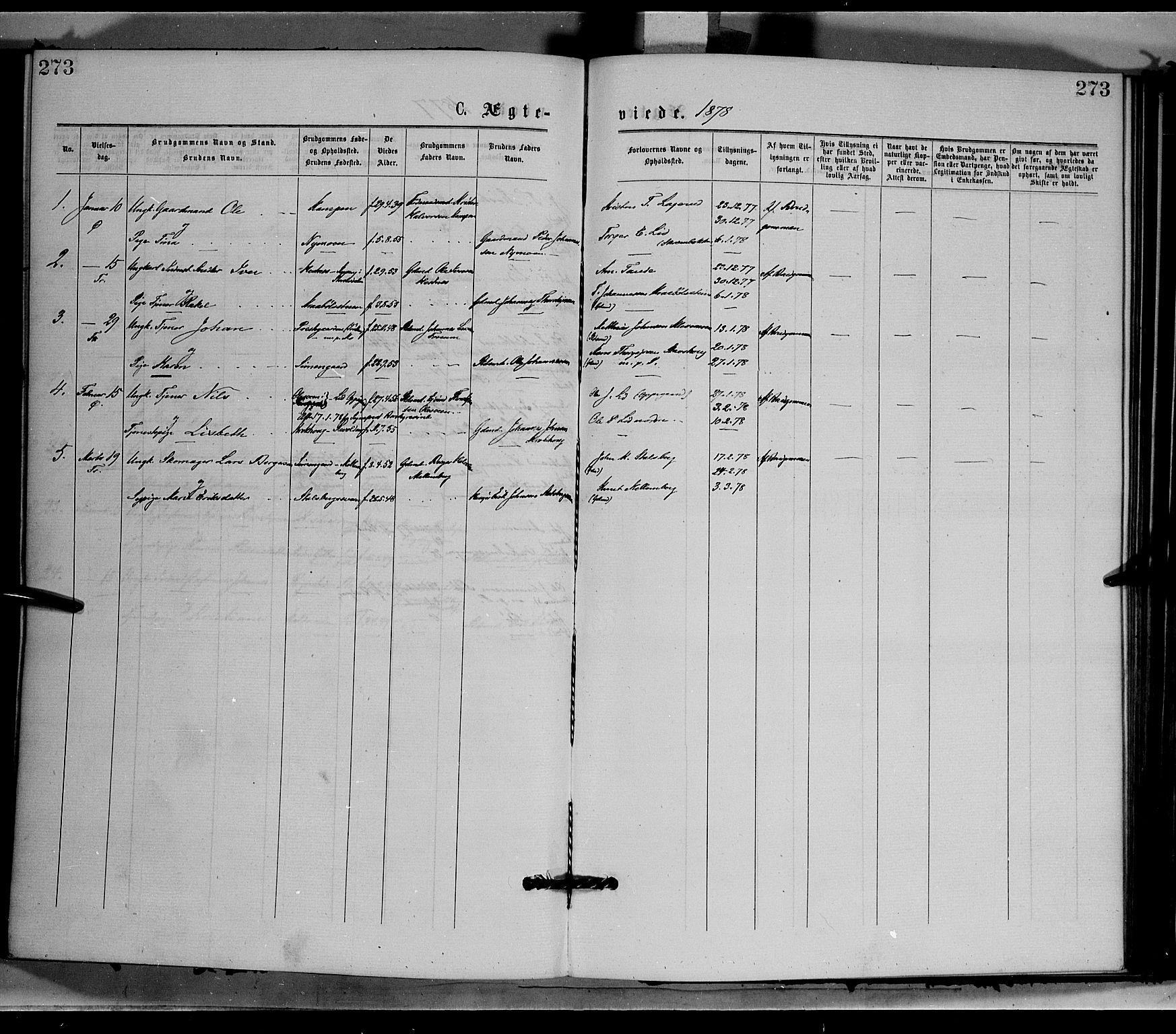 SAH, Øyer prestekontor, Ministerialbok nr. 7, 1875-1878, s. 273