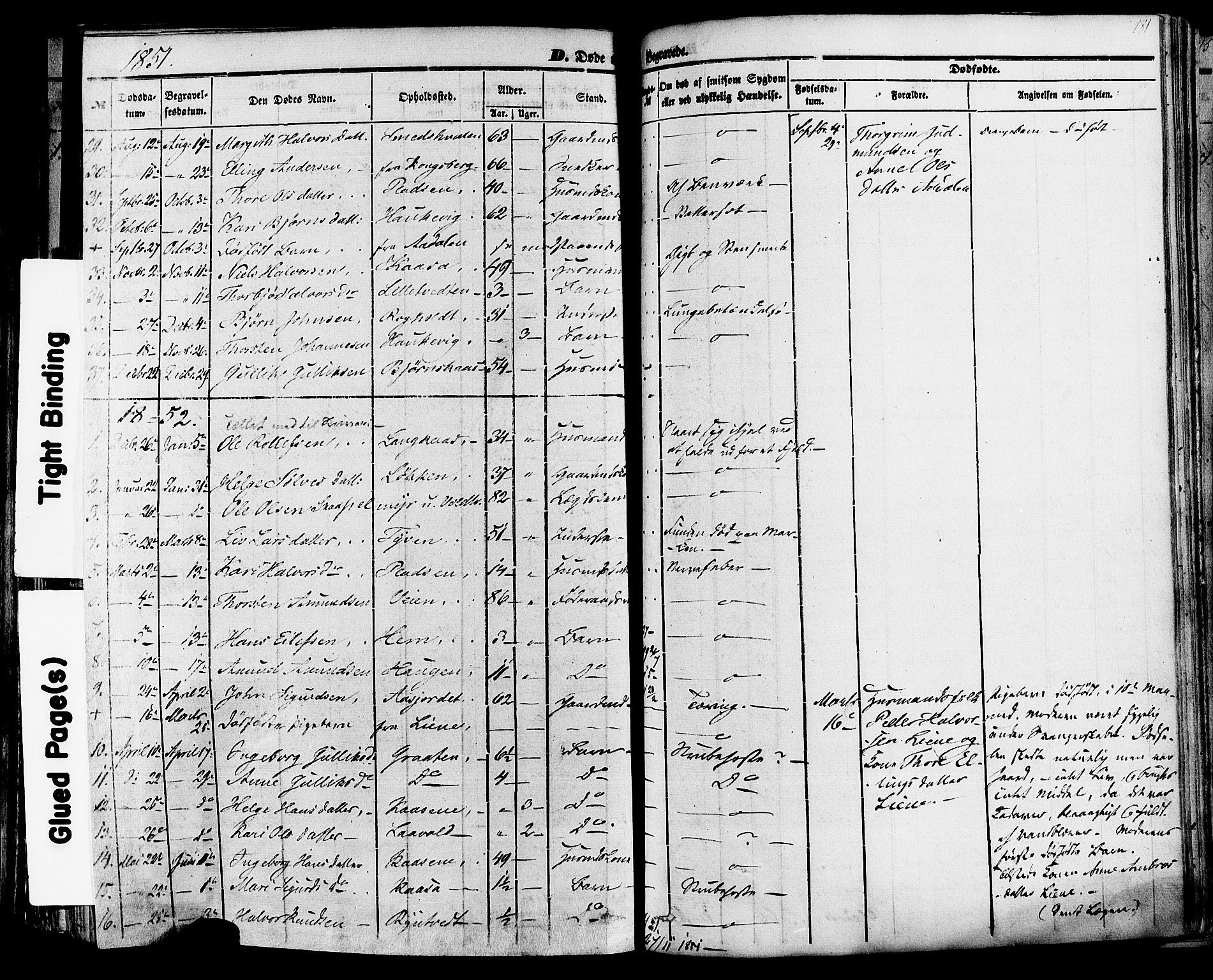 SAKO, Sauherad kirkebøker, F/Fa/L0007: Ministerialbok nr. I 7, 1851-1873, s. 181