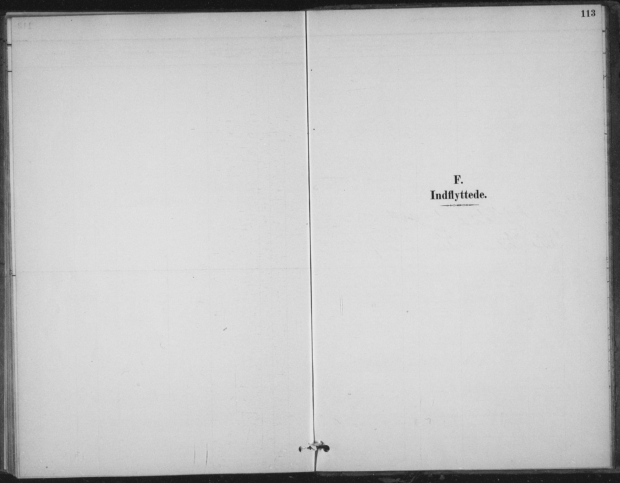 SAT, Ministerialprotokoller, klokkerbøker og fødselsregistre - Nord-Trøndelag, 702/L0023: Ministerialbok nr. 702A01, 1883-1897, s. 113