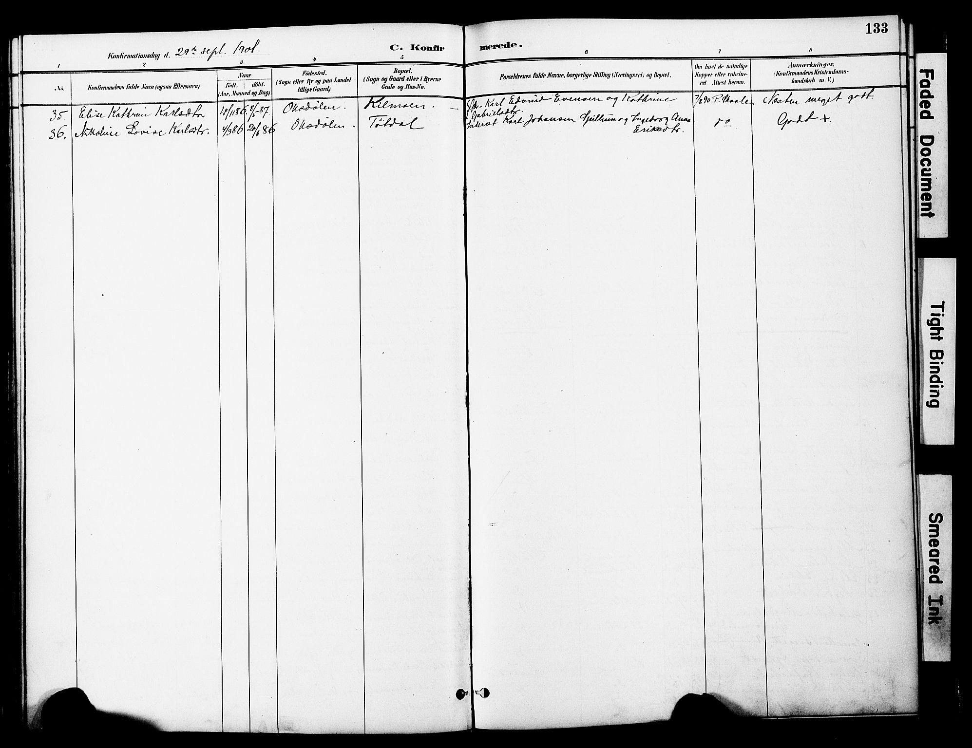 SAT, Ministerialprotokoller, klokkerbøker og fødselsregistre - Nord-Trøndelag, 774/L0628: Ministerialbok nr. 774A02, 1887-1903, s. 133