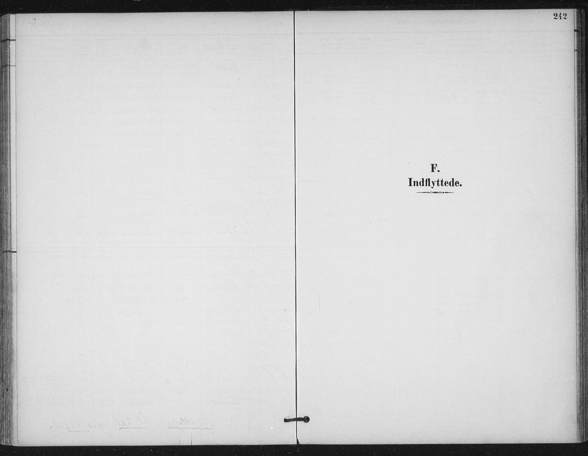 SAT, Ministerialprotokoller, klokkerbøker og fødselsregistre - Møre og Romsdal, 529/L0457: Ministerialbok nr. 529A07, 1894-1903, s. 242