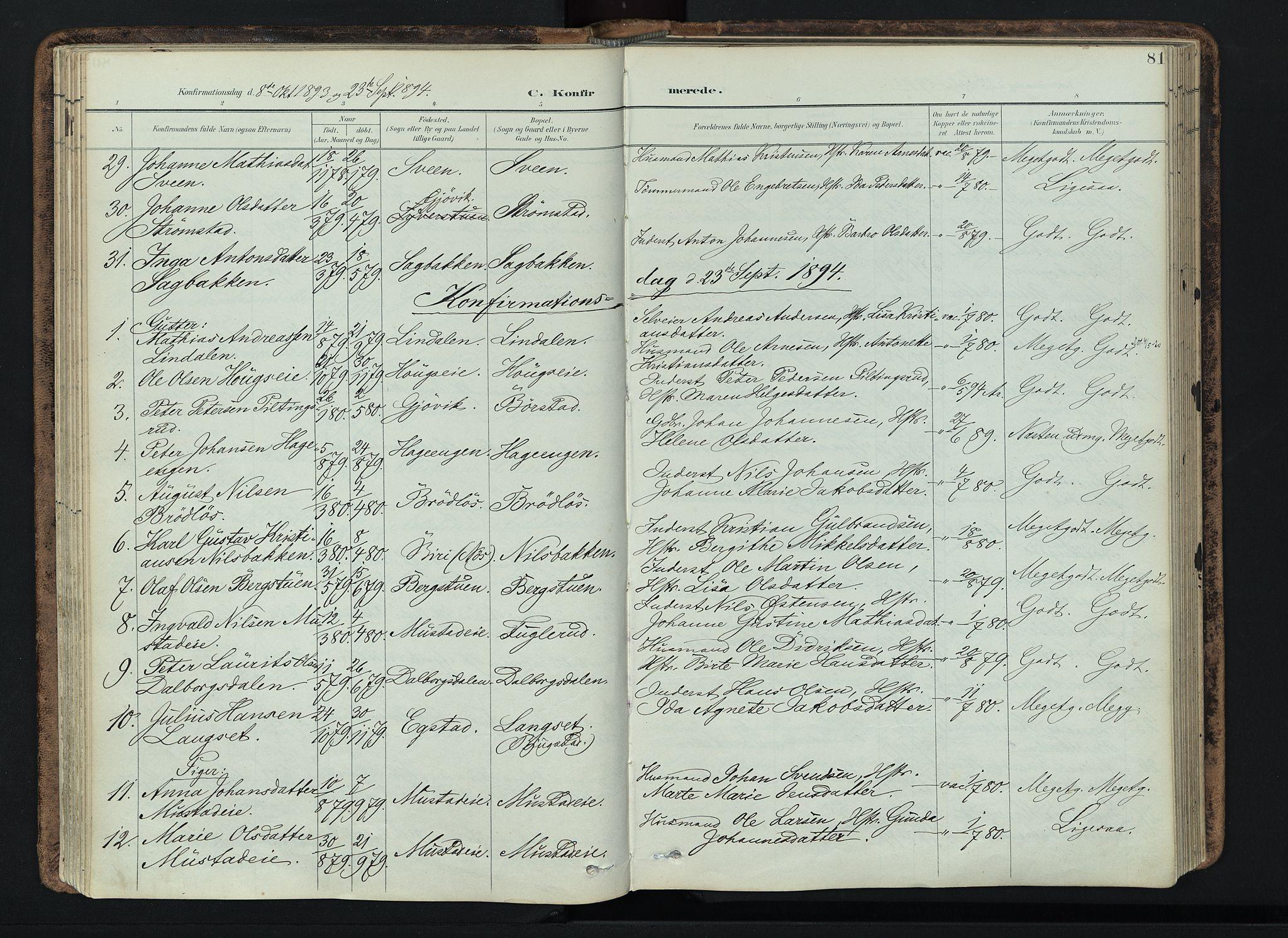 SAH, Vardal prestekontor, H/Ha/Haa/L0019: Ministerialbok nr. 19, 1893-1907, s. 81