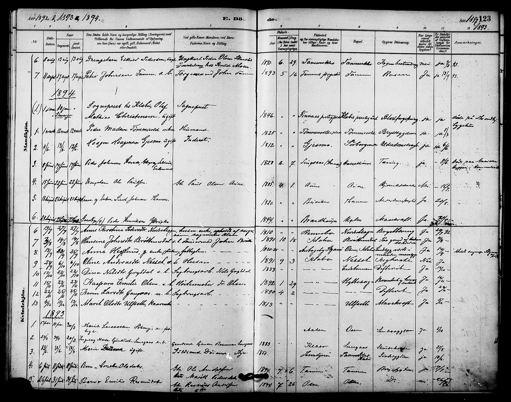 SAT, Ministerialprotokoller, klokkerbøker og fødselsregistre - Sør-Trøndelag, 618/L0444: Ministerialbok nr. 618A07, 1880-1898, s. 123