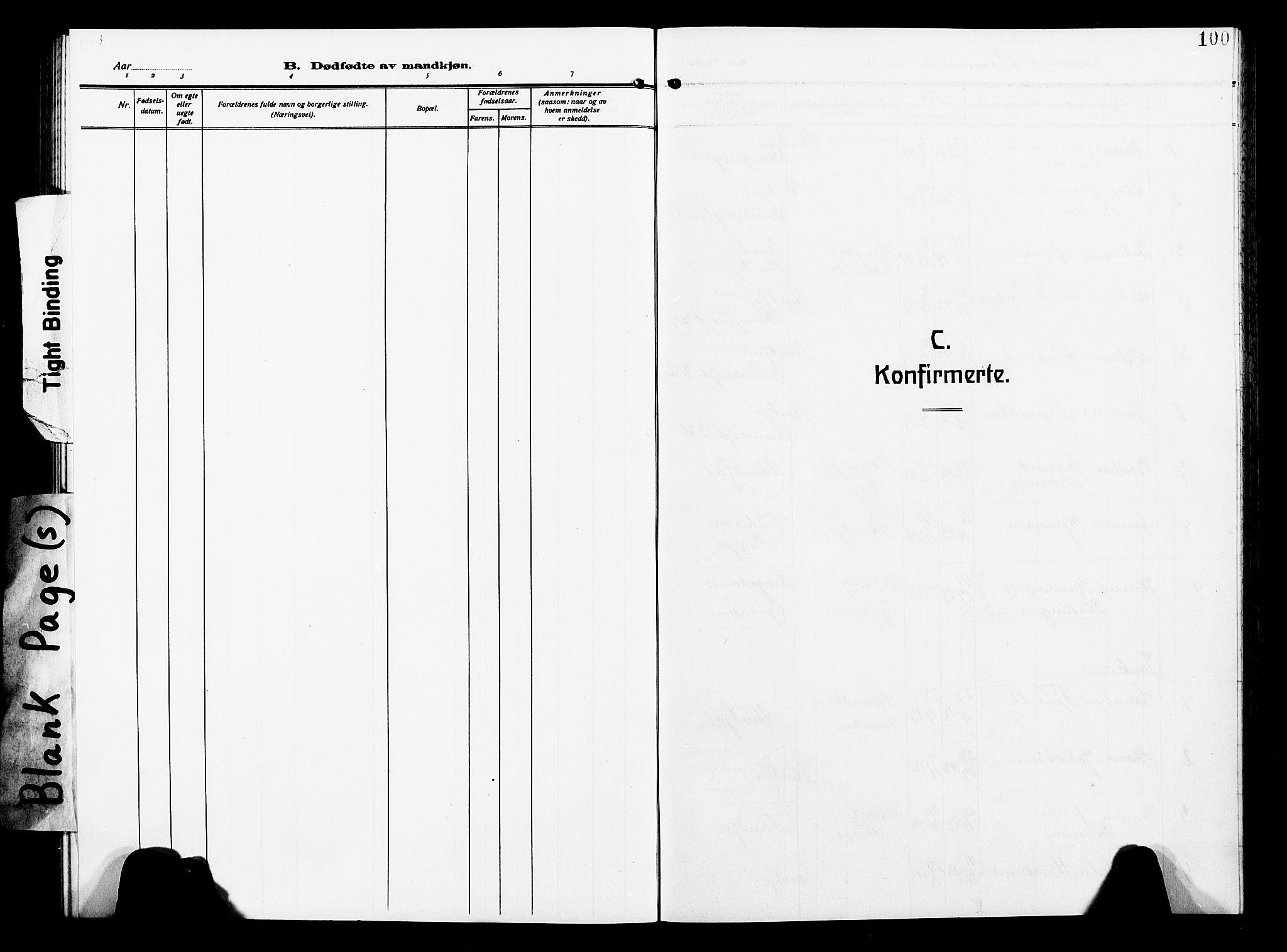 SAT, Ministerialprotokoller, klokkerbøker og fødselsregistre - Nord-Trøndelag, 739/L0376: Klokkerbok nr. 739C04, 1908-1917, s. 100