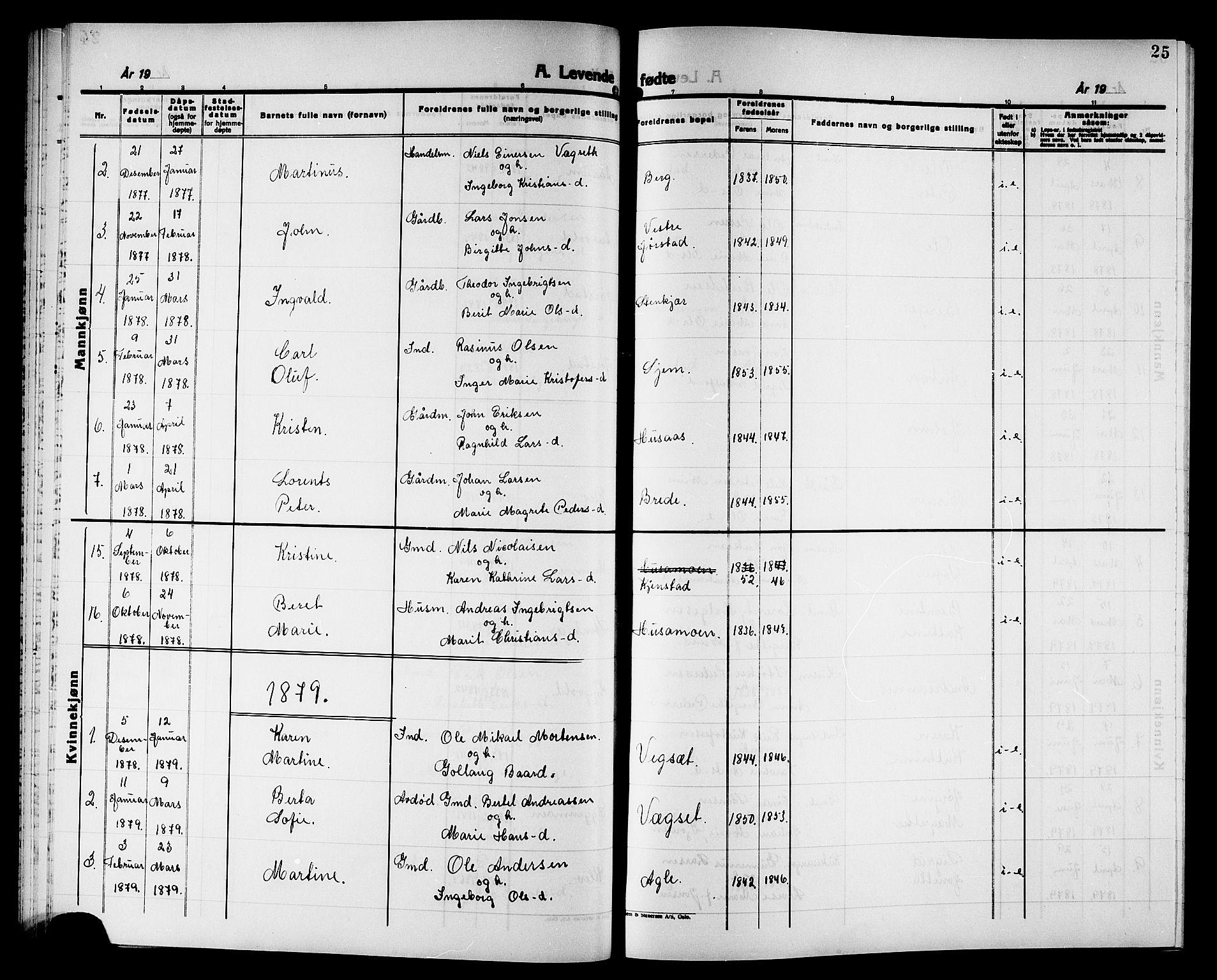 SAT, Ministerialprotokoller, klokkerbøker og fødselsregistre - Nord-Trøndelag, 749/L0486: Ministerialbok nr. 749D02, 1873-1887, s. 25