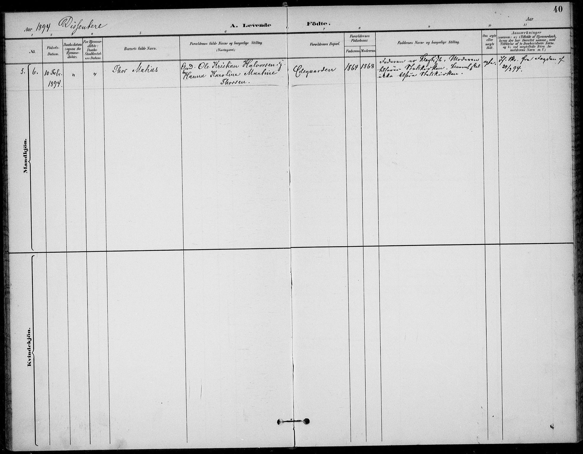 SAKO, Solum kirkebøker, F/Fc/L0002: Ministerialbok nr. III 2, 1892-1906, s. 40