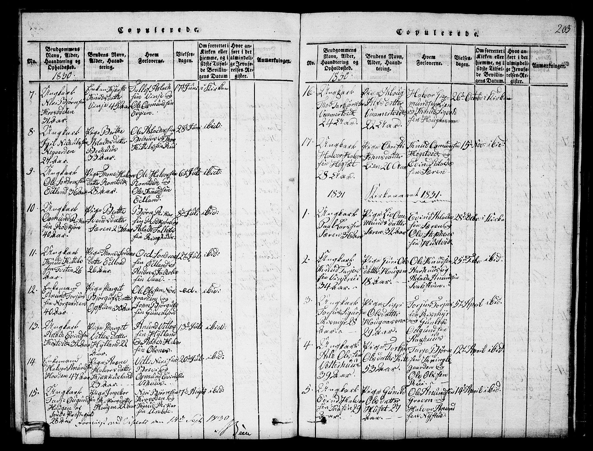 SAKO, Vinje kirkebøker, G/Ga/L0001: Klokkerbok nr. I 1, 1814-1843, s. 203