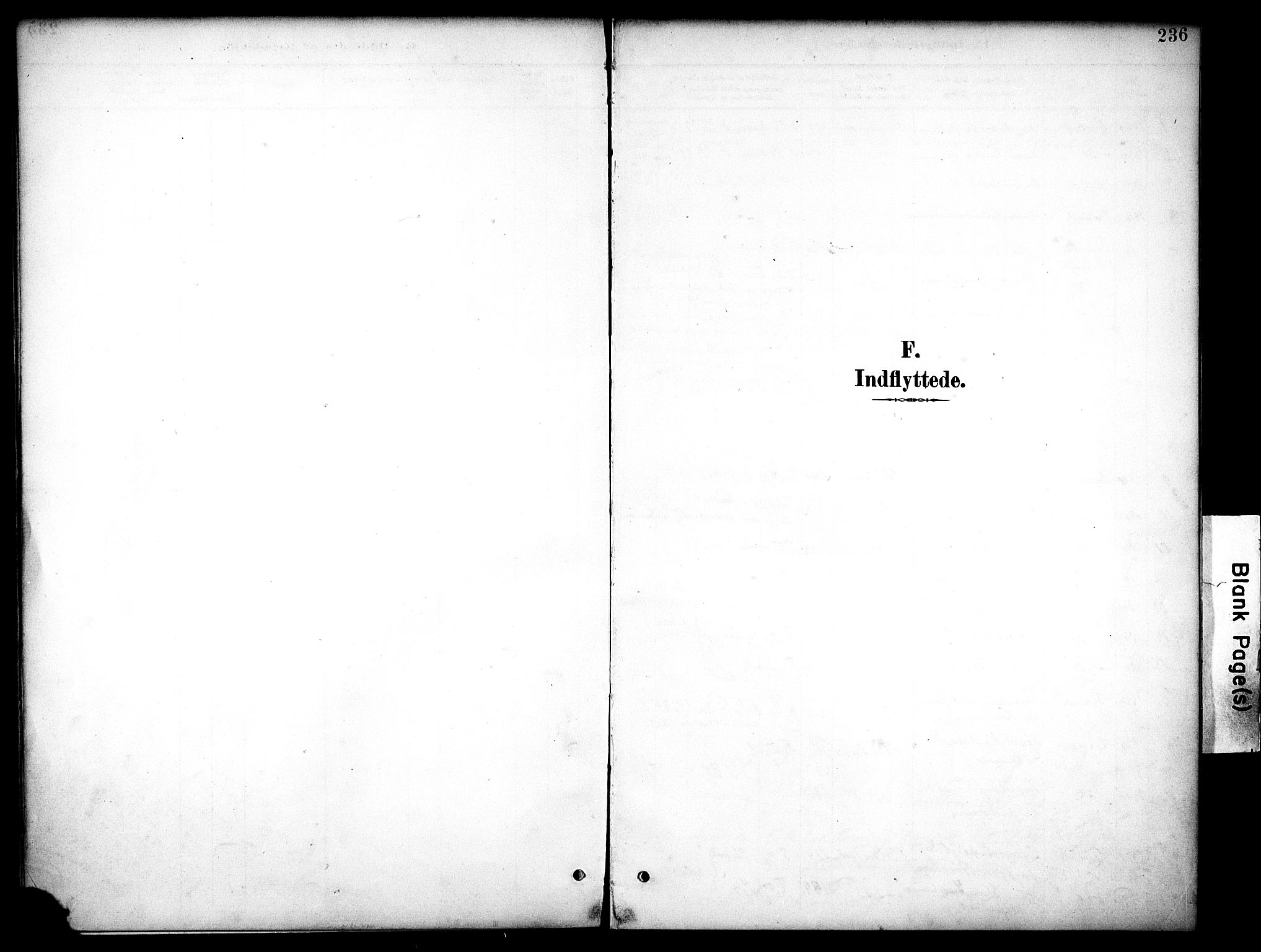 SAST, Haugesund sokneprestkontor, H/Ha/Haa/L0006: Ministerialbok nr. A 6, 1891-1907, s. 236