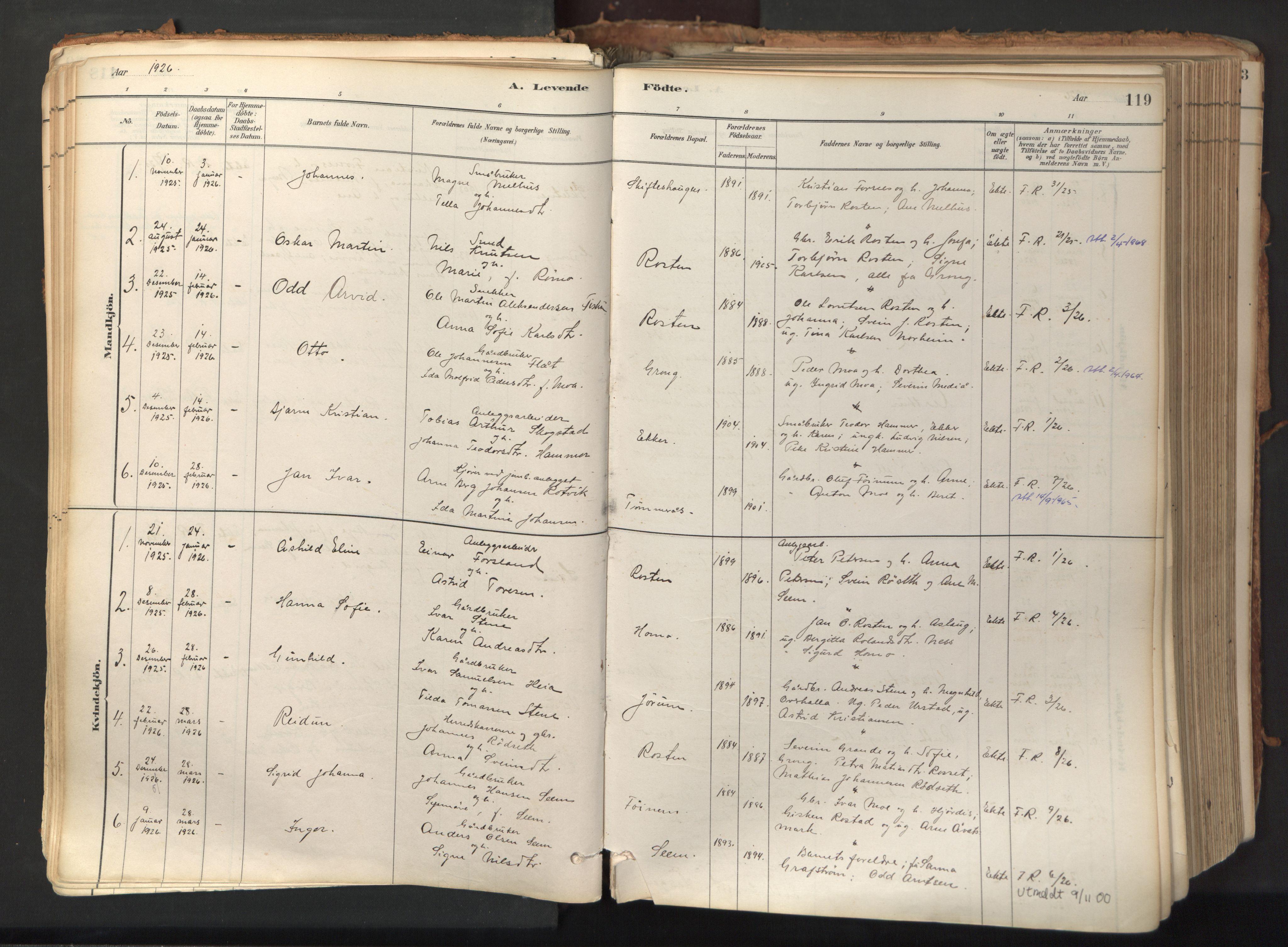 SAT, Ministerialprotokoller, klokkerbøker og fødselsregistre - Nord-Trøndelag, 758/L0519: Ministerialbok nr. 758A04, 1880-1926, s. 119