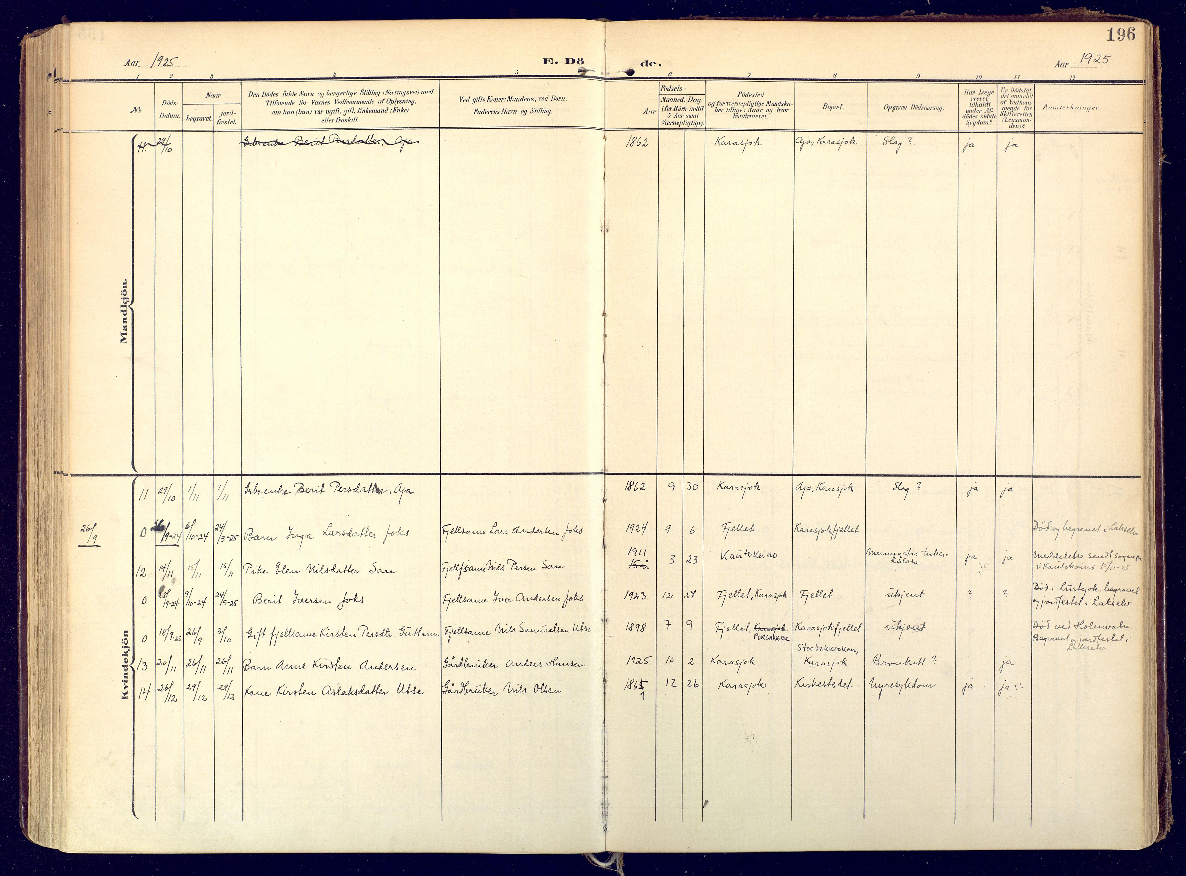 SATØ, Karasjok sokneprestkontor, H/Ha: Ministerialbok nr. 3, 1907-1926, s. 196