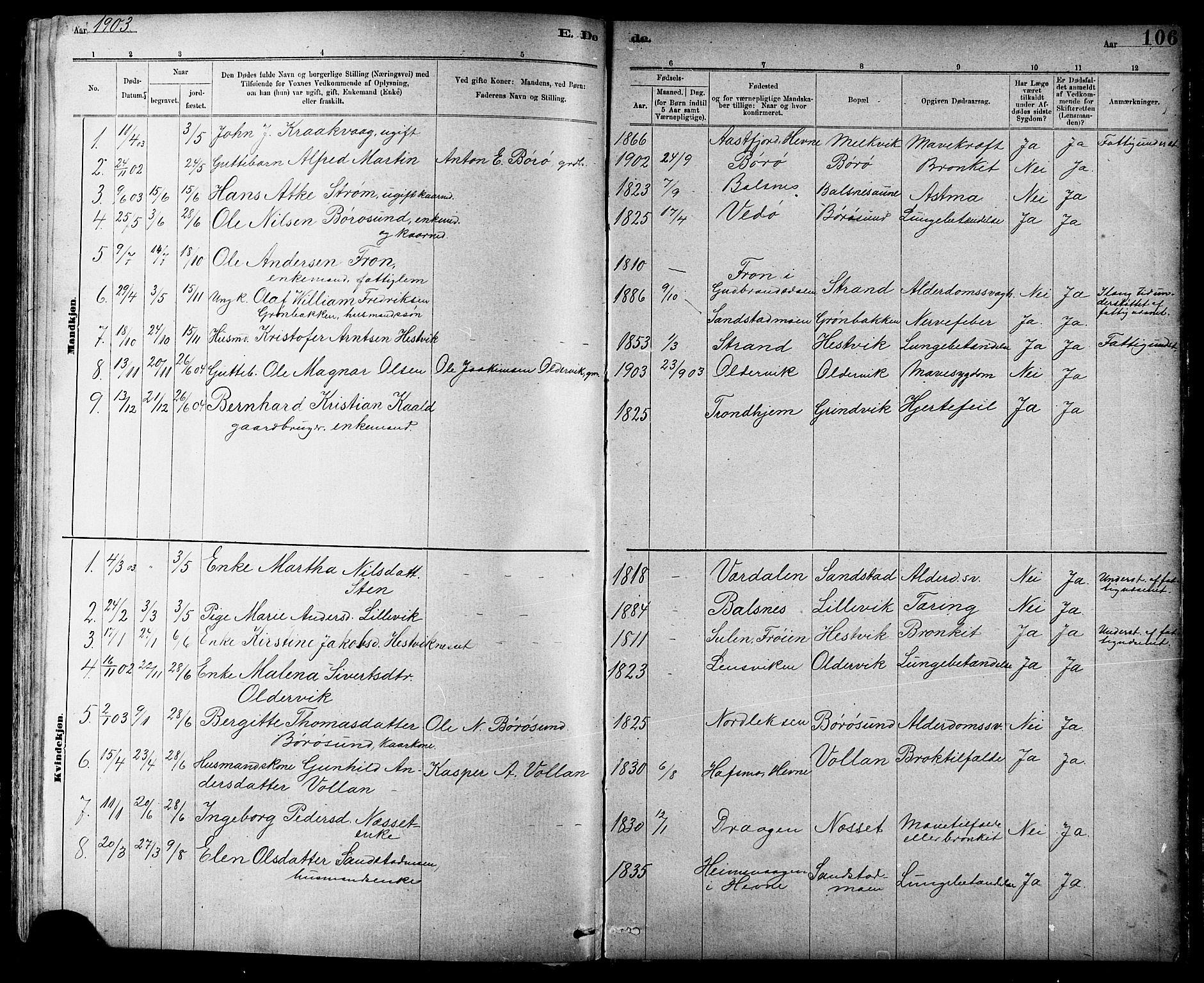 SAT, Ministerialprotokoller, klokkerbøker og fødselsregistre - Sør-Trøndelag, 639/L0573: Klokkerbok nr. 639C01, 1890-1905, s. 106