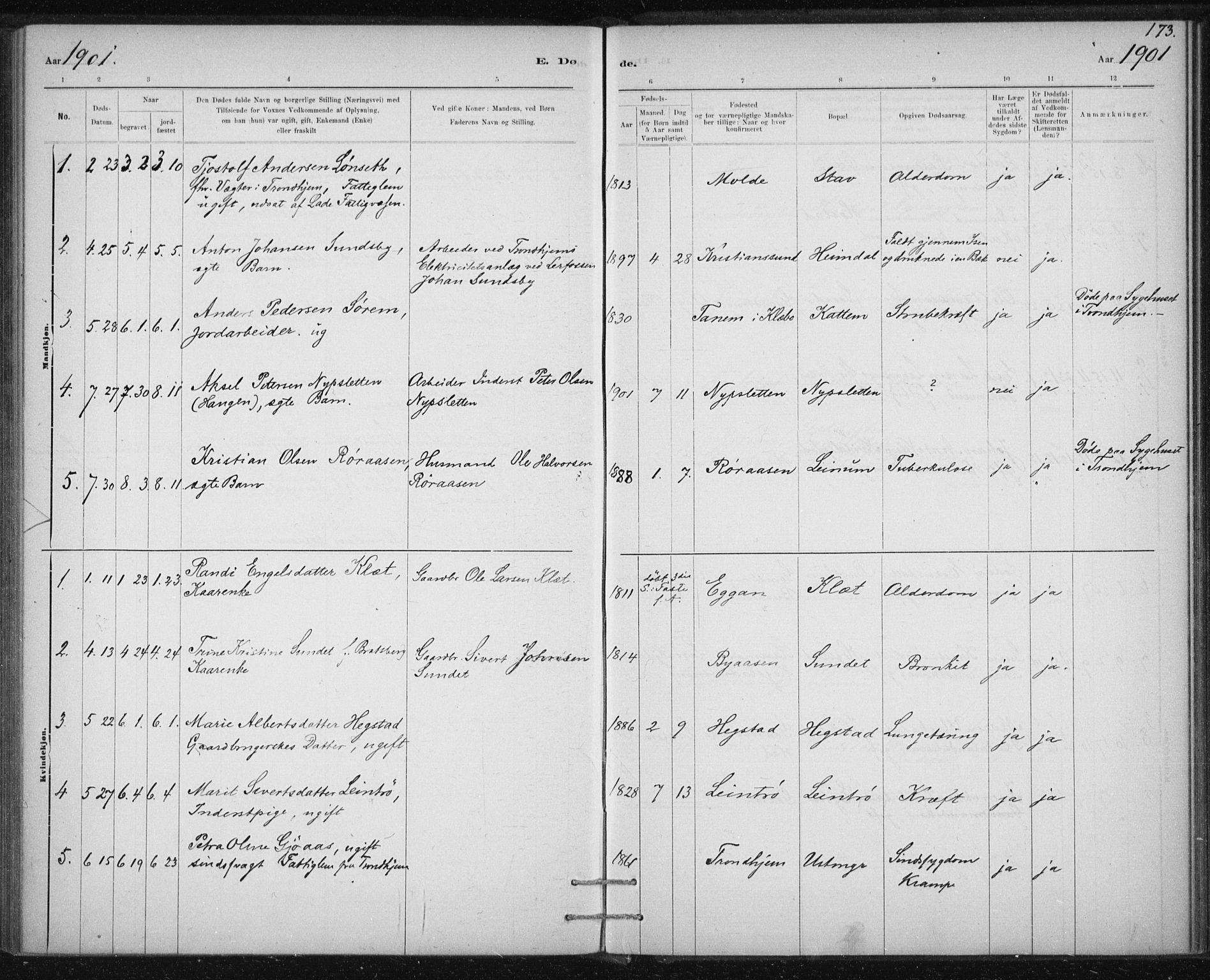 SAT, Ministerialprotokoller, klokkerbøker og fødselsregistre - Sør-Trøndelag, 613/L0392: Ministerialbok nr. 613A01, 1887-1906, s. 173