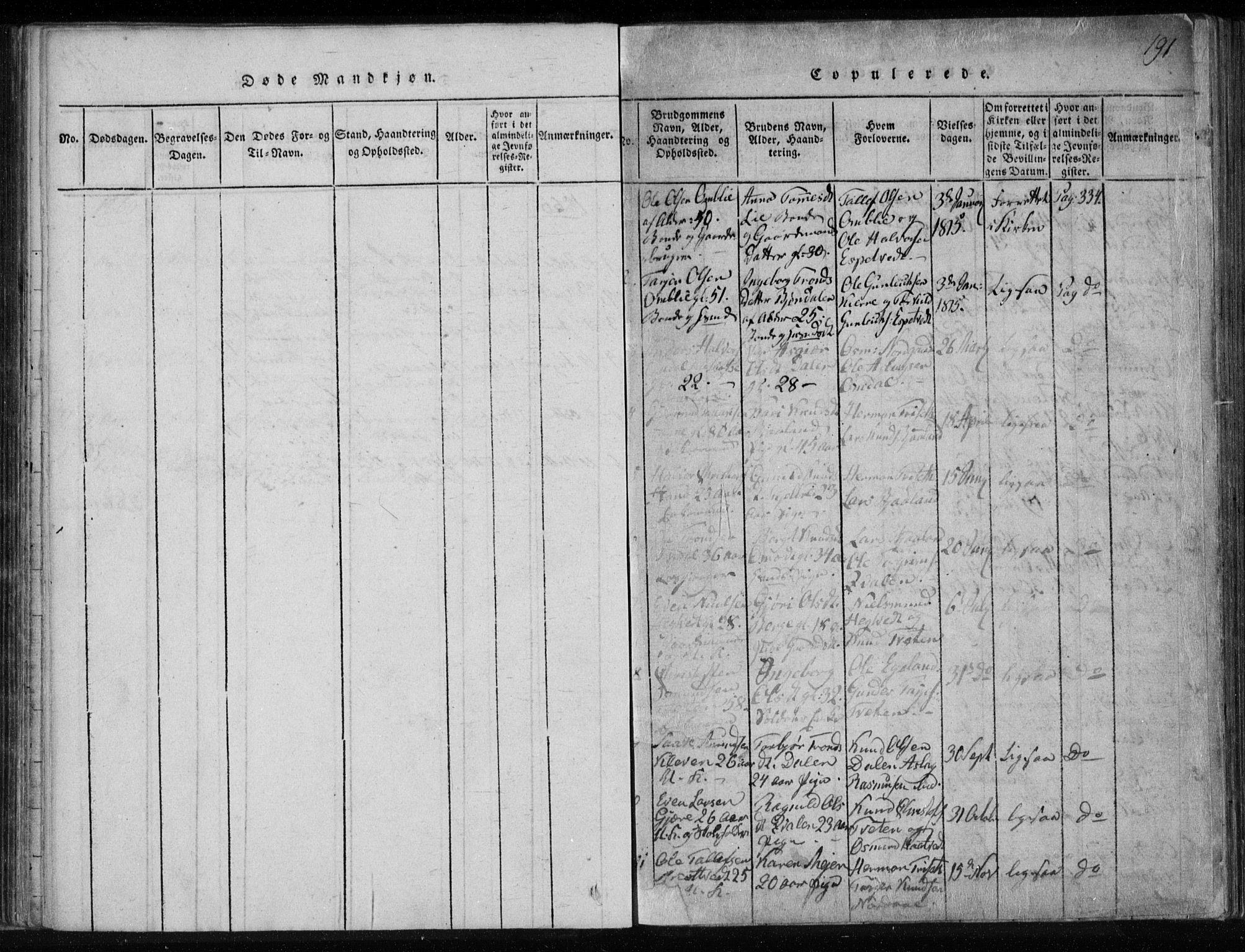 SAKO, Lårdal kirkebøker, F/Fa/L0005: Ministerialbok nr. I 5, 1815-1860, s. 191