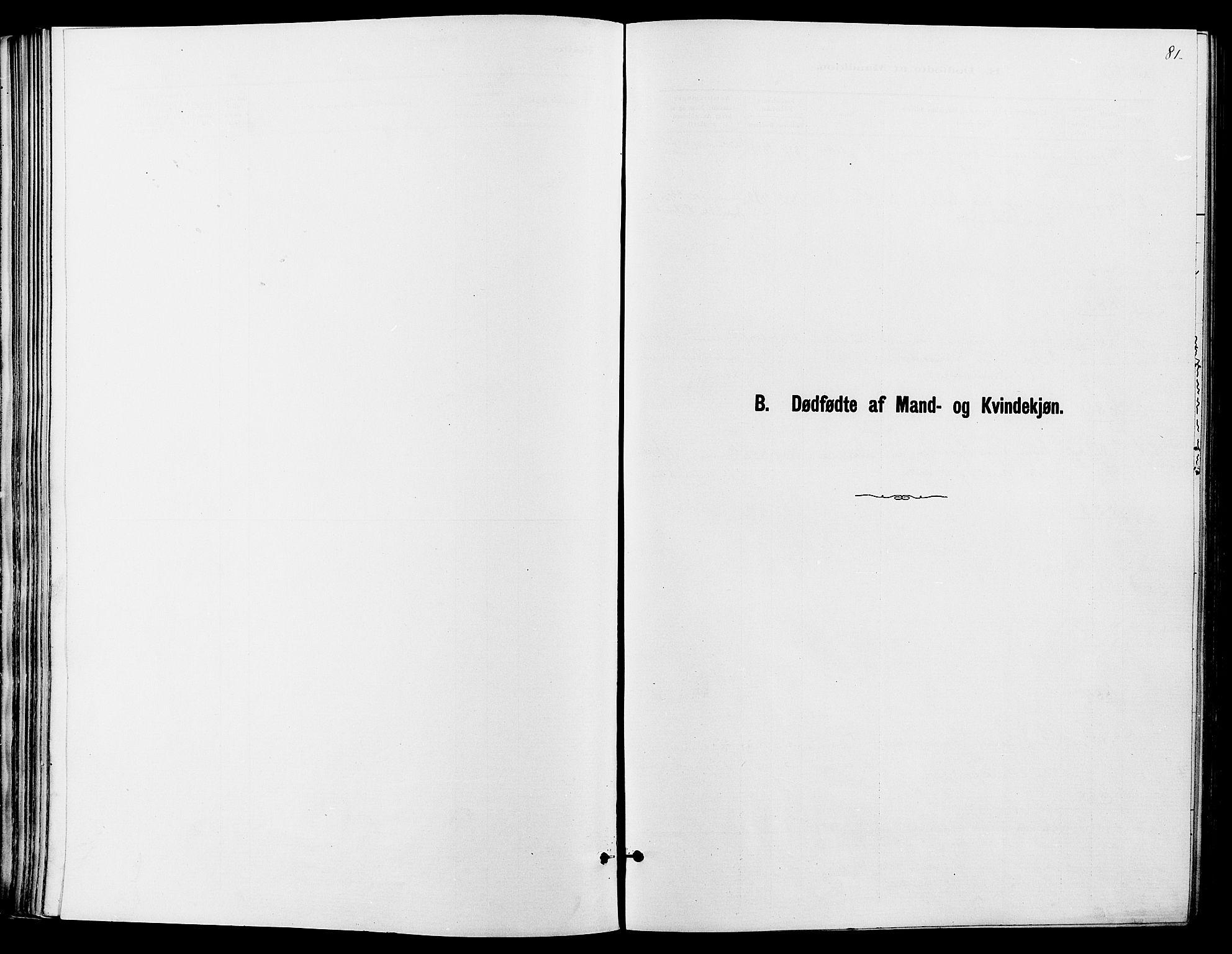 SAH, Dovre prestekontor, Ministerialbok nr. 2, 1879-1890, s. 81