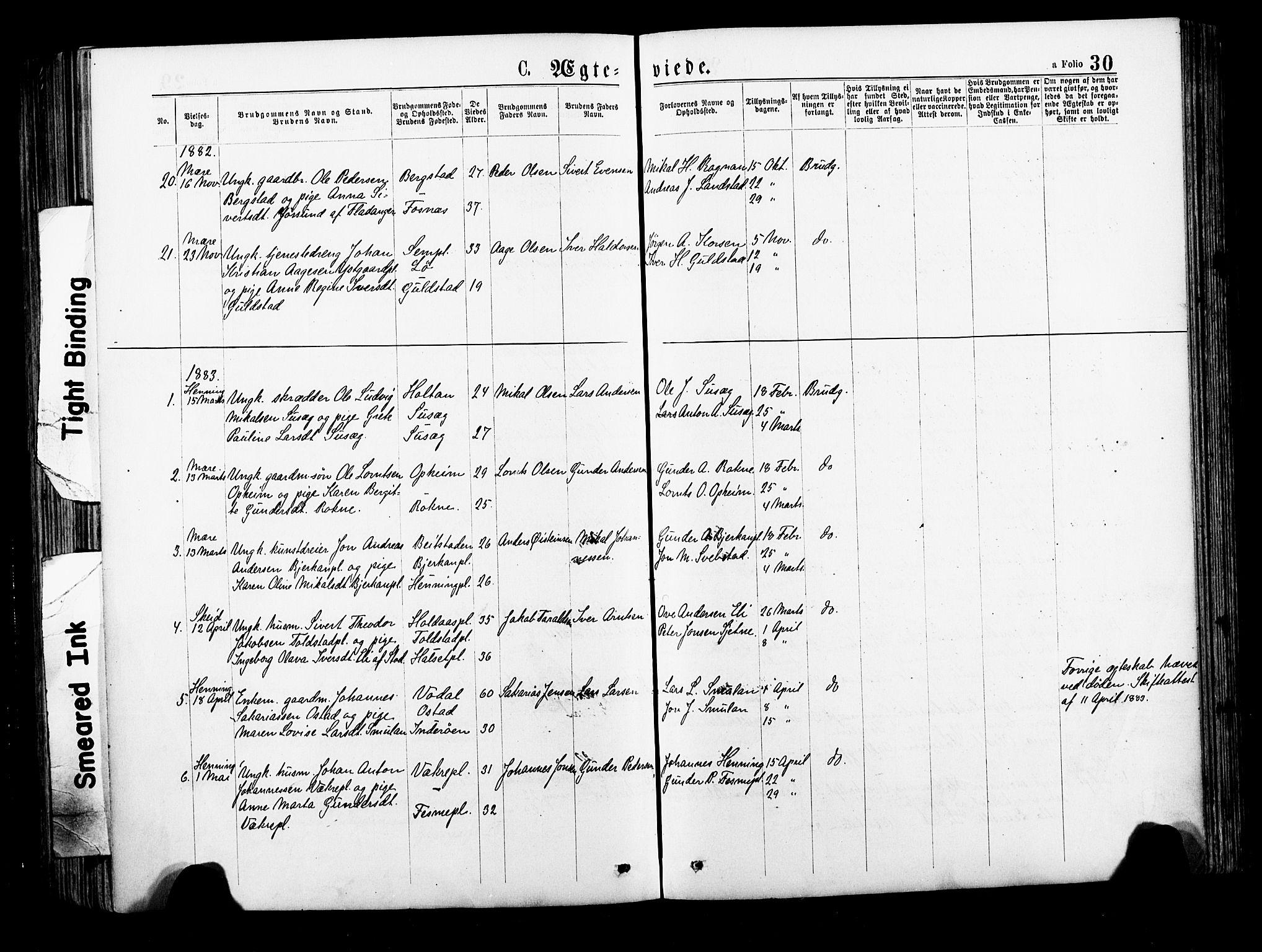 SAT, Ministerialprotokoller, klokkerbøker og fødselsregistre - Nord-Trøndelag, 735/L0348: Ministerialbok nr. 735A09 /1, 1873-1883, s. 30