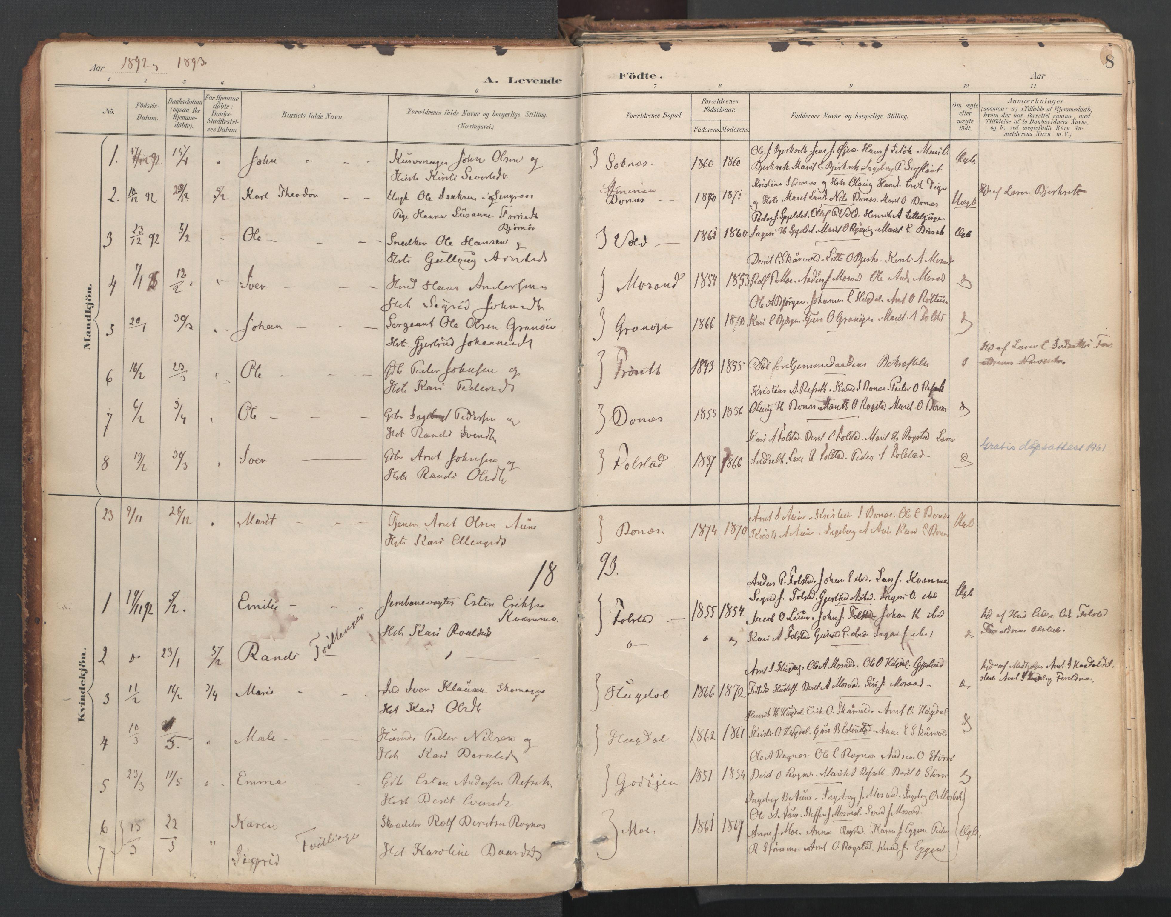 SAT, Ministerialprotokoller, klokkerbøker og fødselsregistre - Sør-Trøndelag, 687/L1004: Ministerialbok nr. 687A10, 1891-1923, s. 8
