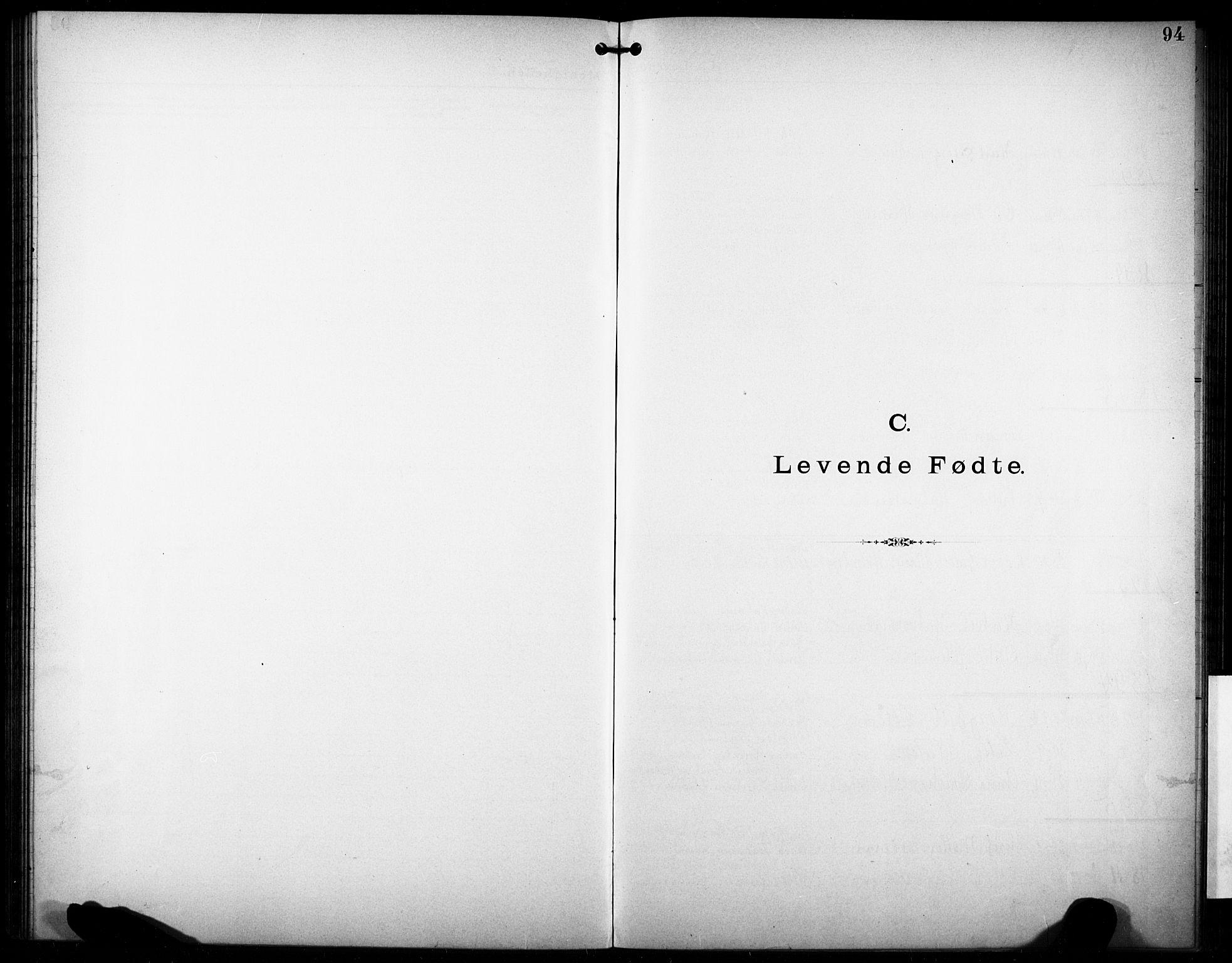 SAKO, Den katolsk-apostoliske menighet i Larvik, F/Fa/L0001: Dissenterprotokoll nr. 1, 1892-1933, s. 94