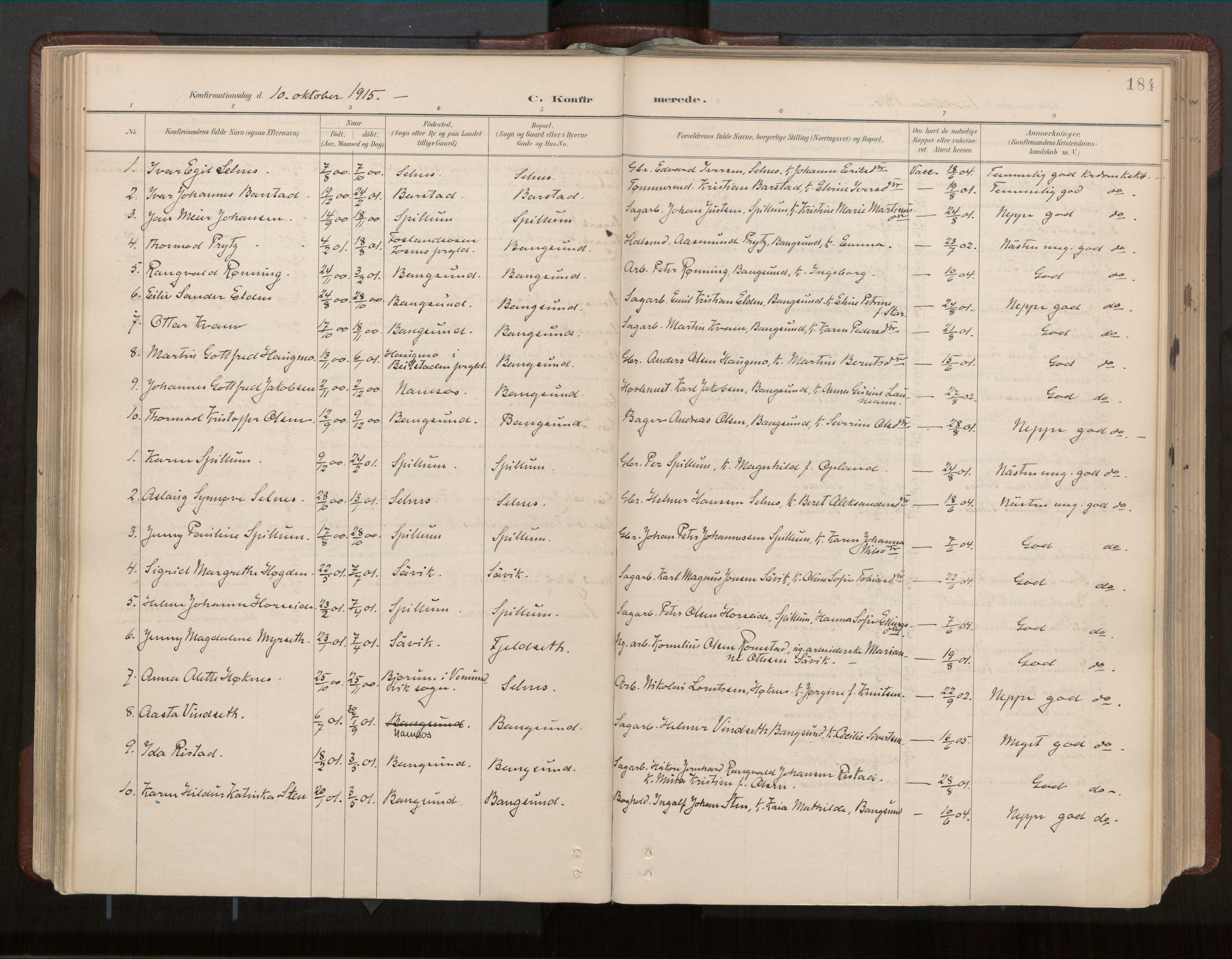 SAT, Ministerialprotokoller, klokkerbøker og fødselsregistre - Nord-Trøndelag, 770/L0589: Ministerialbok nr. 770A03, 1887-1929, s. 184