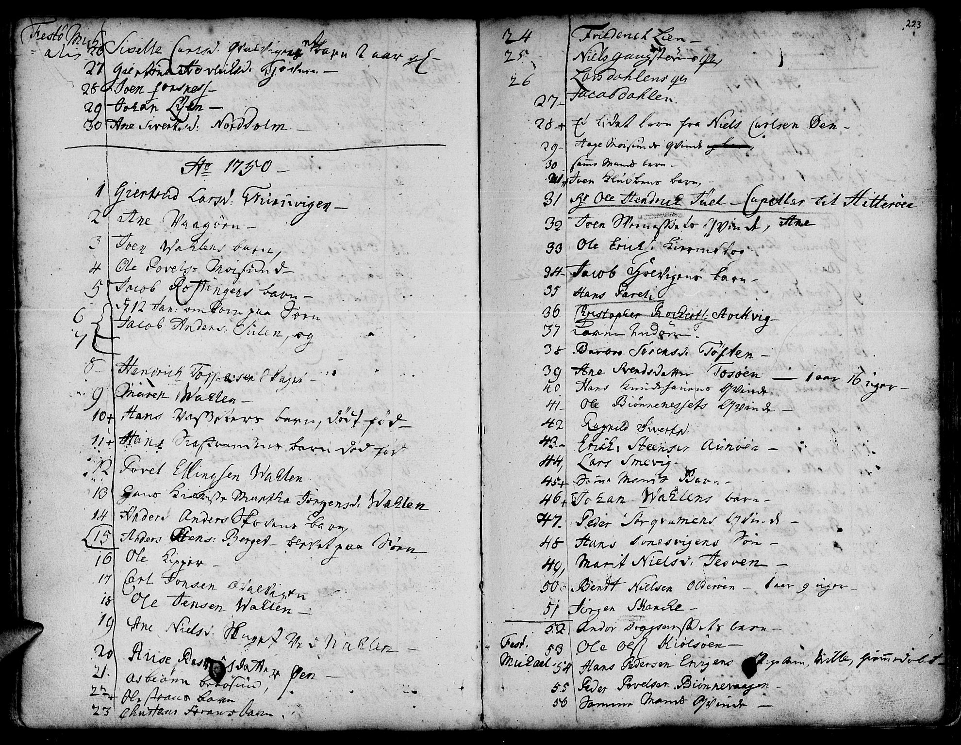 SAT, Ministerialprotokoller, klokkerbøker og fødselsregistre - Sør-Trøndelag, 634/L0525: Ministerialbok nr. 634A01, 1736-1775, s. 223