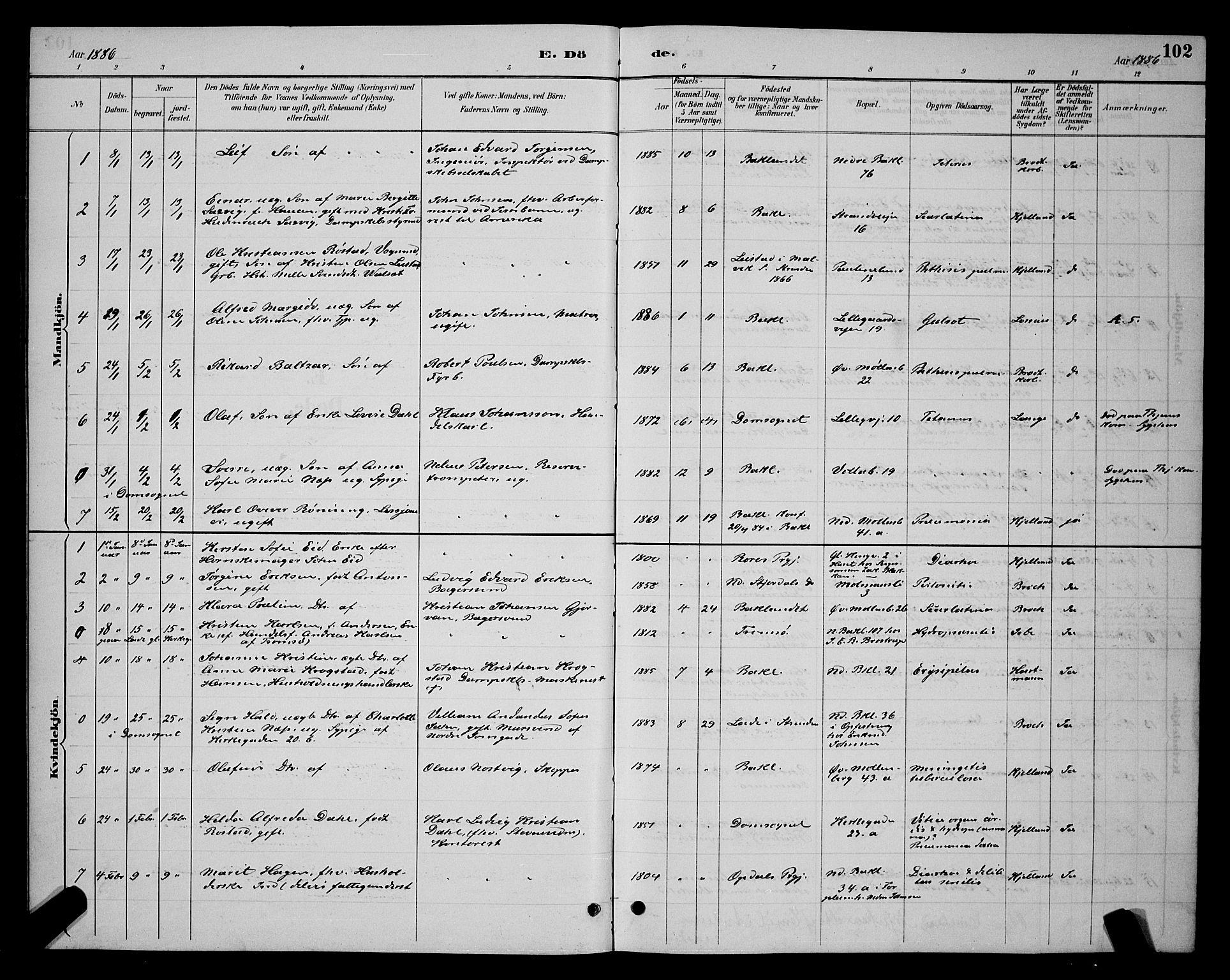 SAT, Ministerialprotokoller, klokkerbøker og fødselsregistre - Sør-Trøndelag, 604/L0223: Klokkerbok nr. 604C06, 1886-1897, s. 102