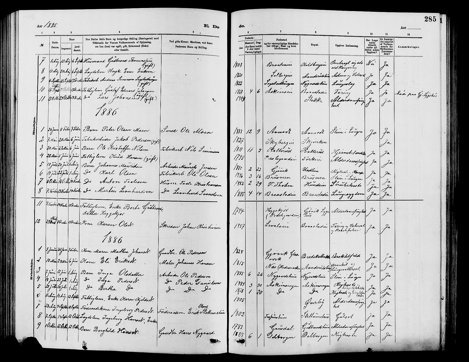 SAH, Vardal prestekontor, H/Ha/Hab/L0007: Klokkerbok nr. 7 /1, 1881-1895, s. 285