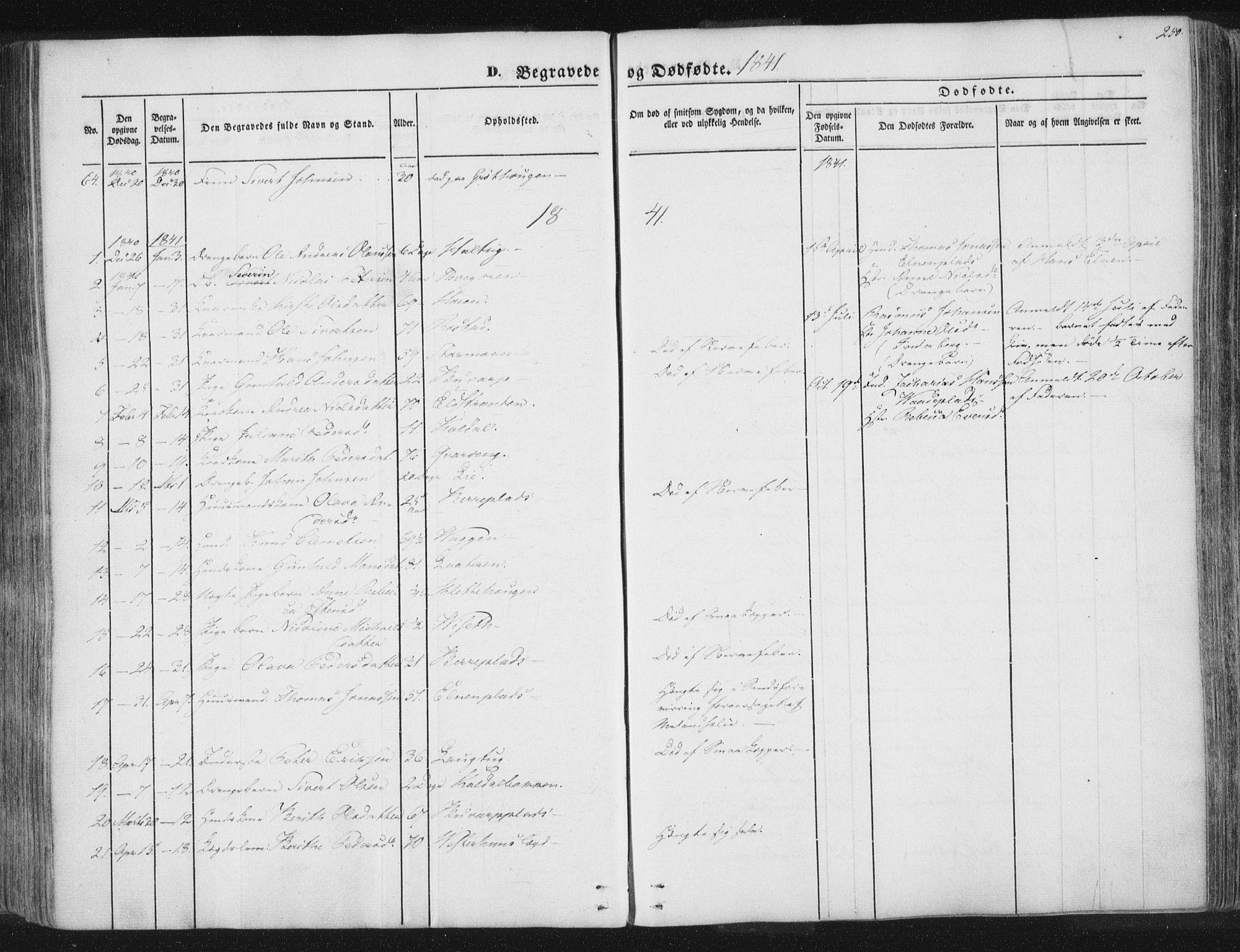 SAT, Ministerialprotokoller, klokkerbøker og fødselsregistre - Nord-Trøndelag, 741/L0392: Ministerialbok nr. 741A06, 1836-1848, s. 250
