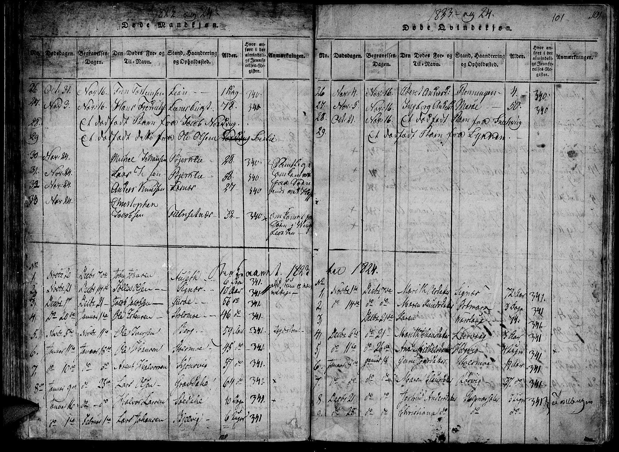 SAT, Ministerialprotokoller, klokkerbøker og fødselsregistre - Sør-Trøndelag, 630/L0491: Ministerialbok nr. 630A04, 1818-1830, s. 101