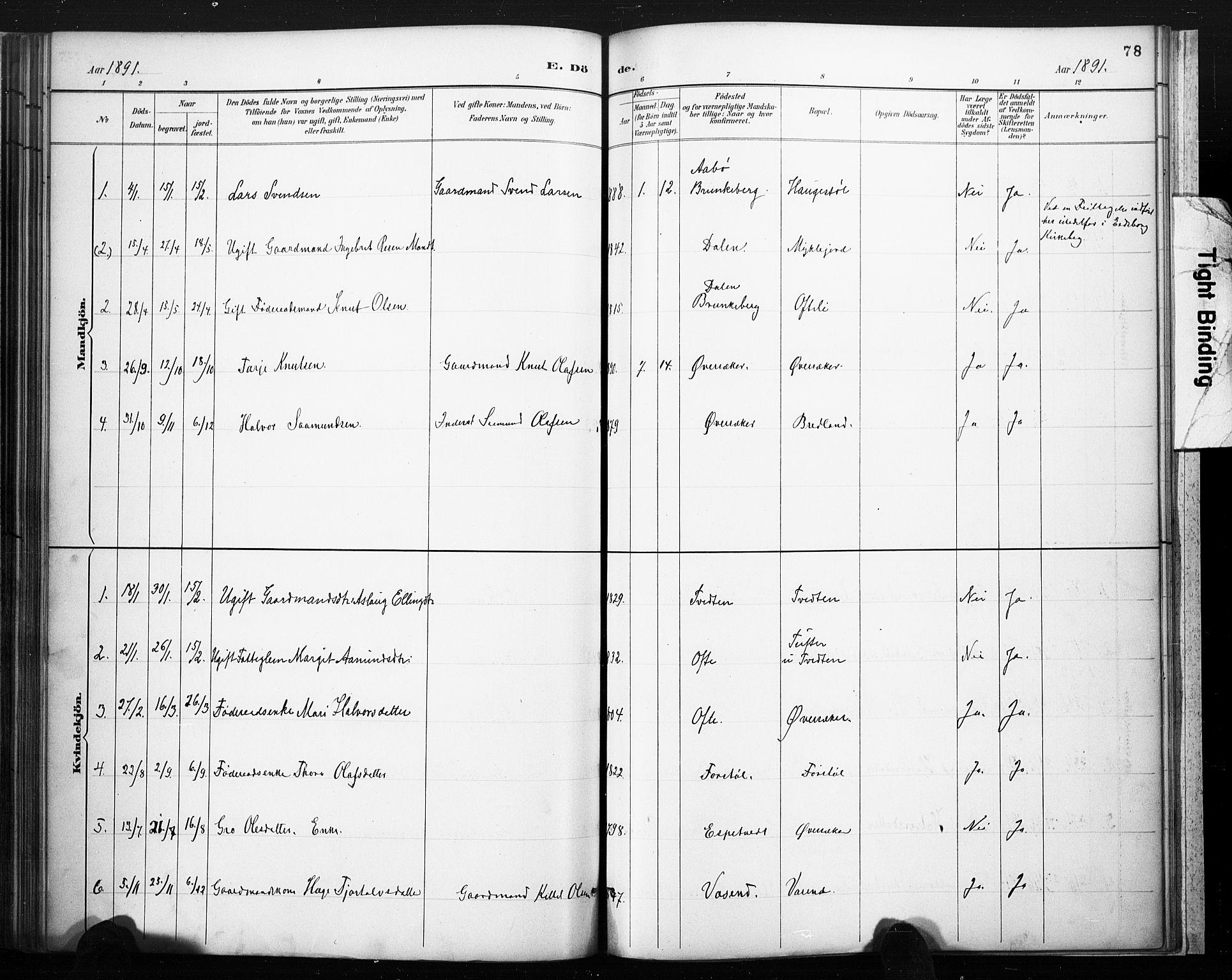 SAKO, Lårdal kirkebøker, F/Fc/L0002: Ministerialbok nr. III 2, 1887-1906, s. 78
