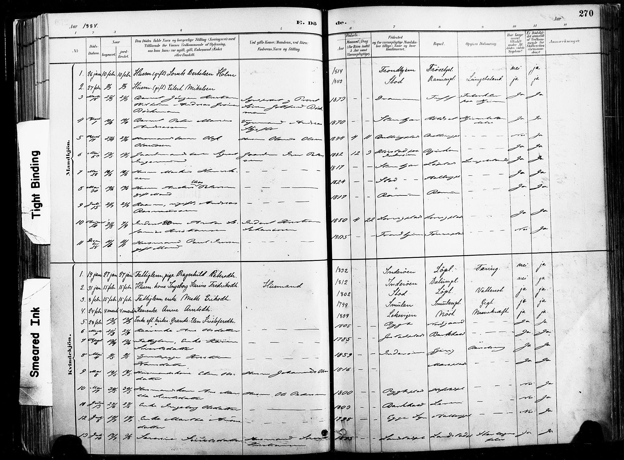 SAT, Ministerialprotokoller, klokkerbøker og fødselsregistre - Nord-Trøndelag, 735/L0351: Ministerialbok nr. 735A10, 1884-1908, s. 270