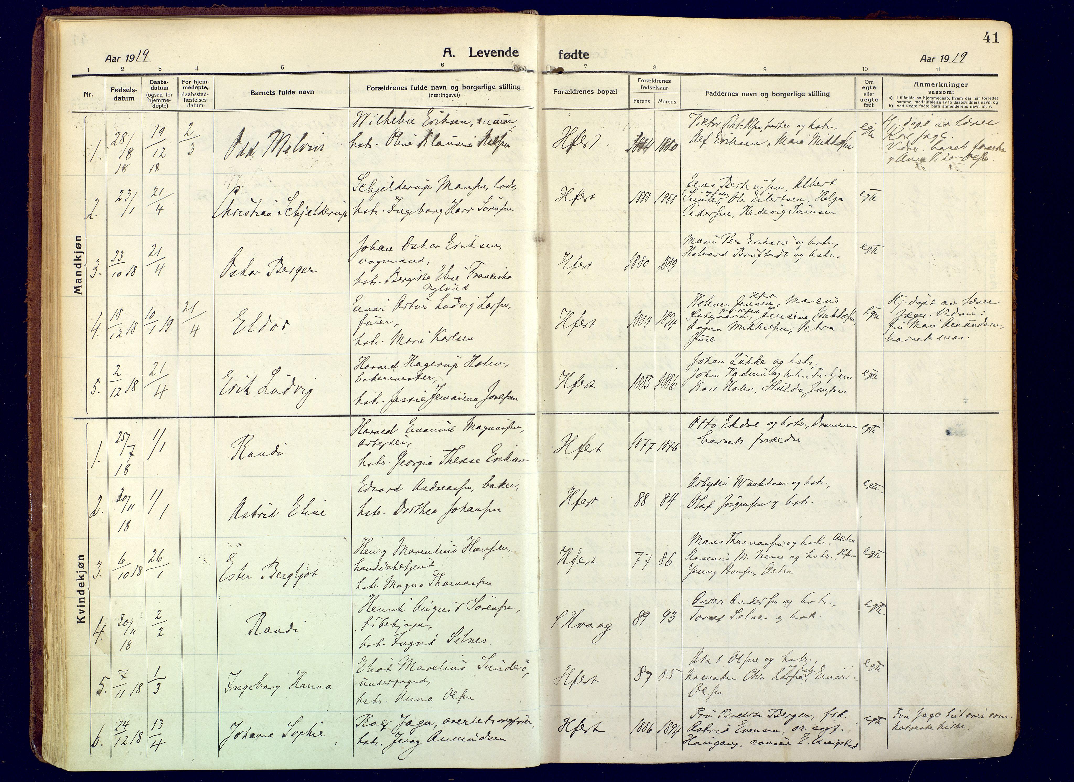 SATØ, Hammerfest sokneprestembete, Ministerialbok nr. 15, 1916-1923, s. 41