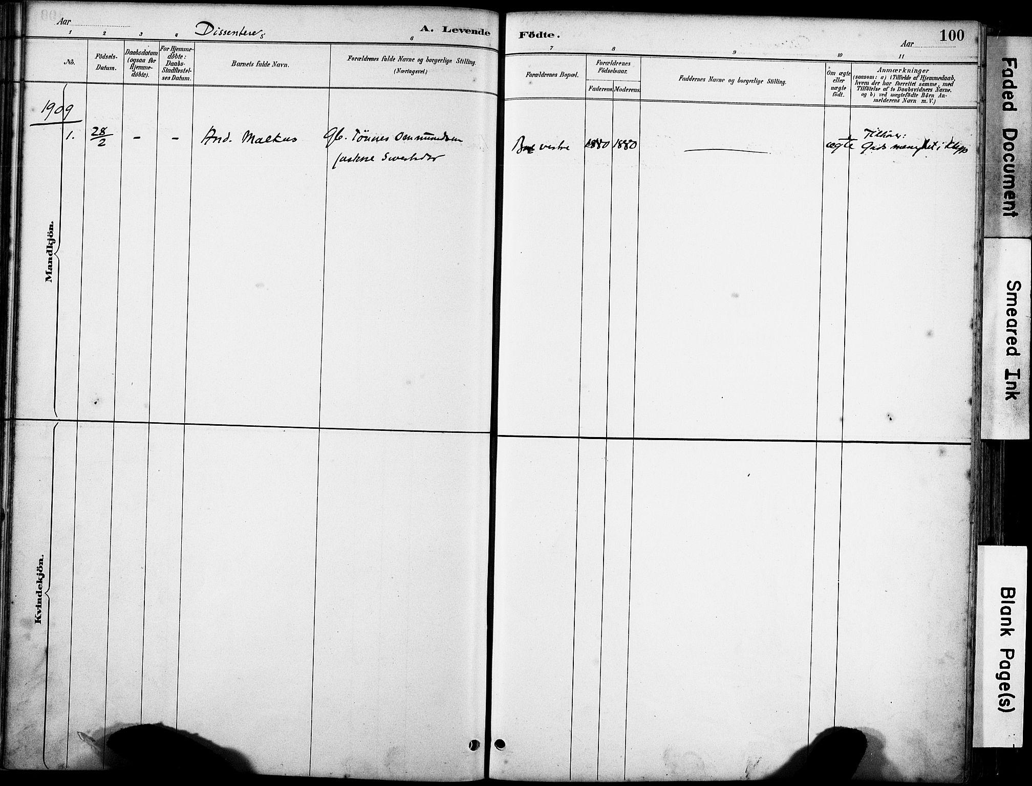 SAST, Klepp sokneprestkontor, 3/30BA/L0008: Ministerialbok nr. A 9, 1886-1919, s. 100