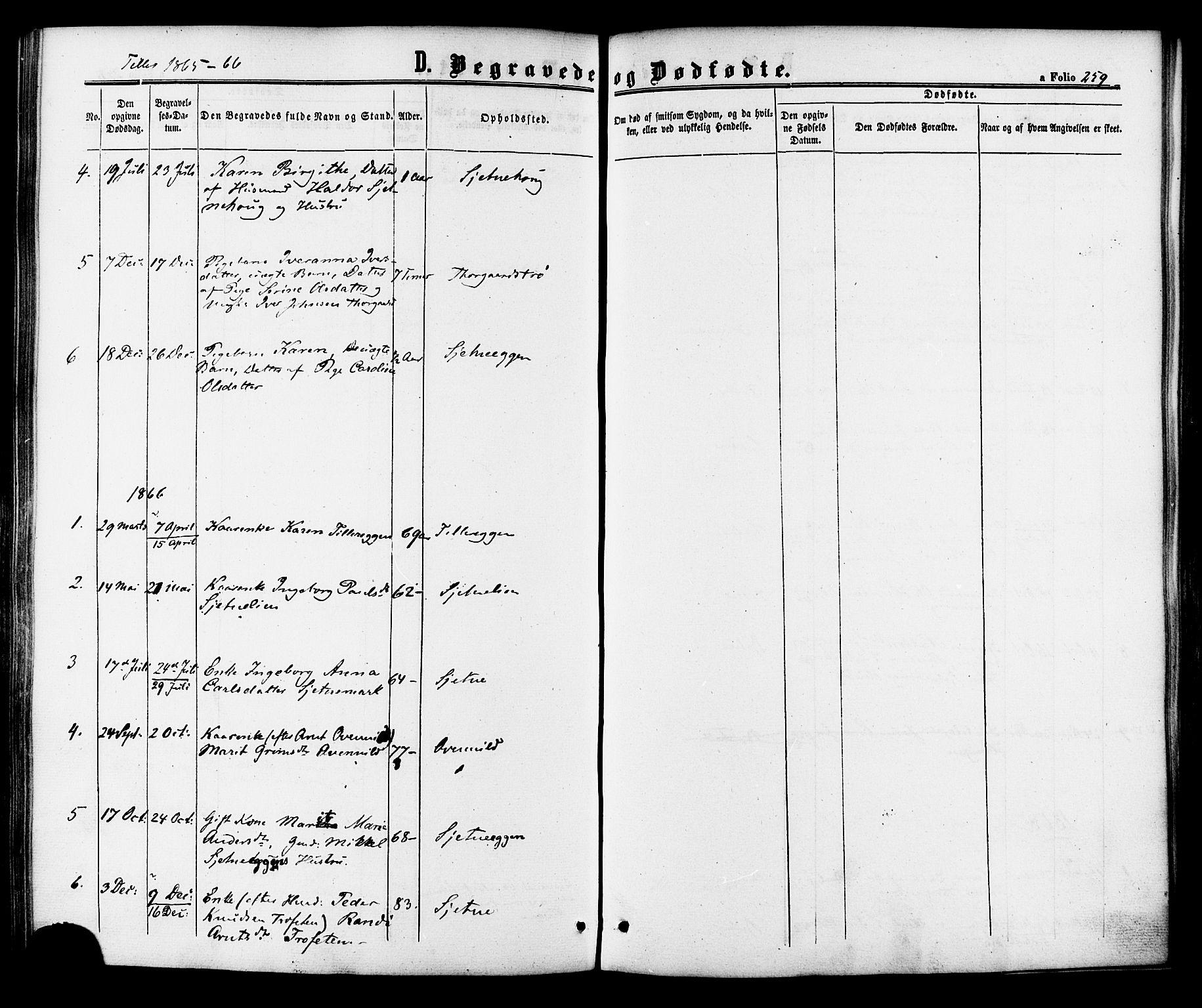 SAT, Ministerialprotokoller, klokkerbøker og fødselsregistre - Sør-Trøndelag, 618/L0443: Ministerialbok nr. 618A06 /2, 1863-1879, s. 259