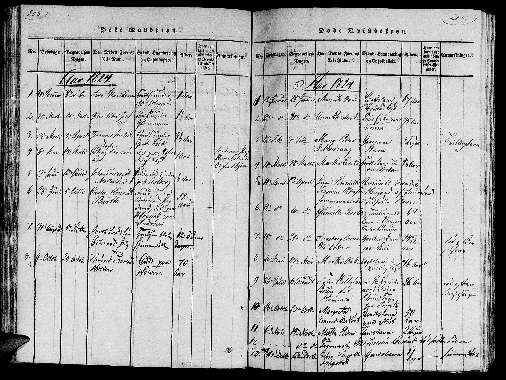 SAT, Ministerialprotokoller, klokkerbøker og fødselsregistre - Nord-Trøndelag, 735/L0333: Ministerialbok nr. 735A04 /1, 1816-1824, s. 206-207