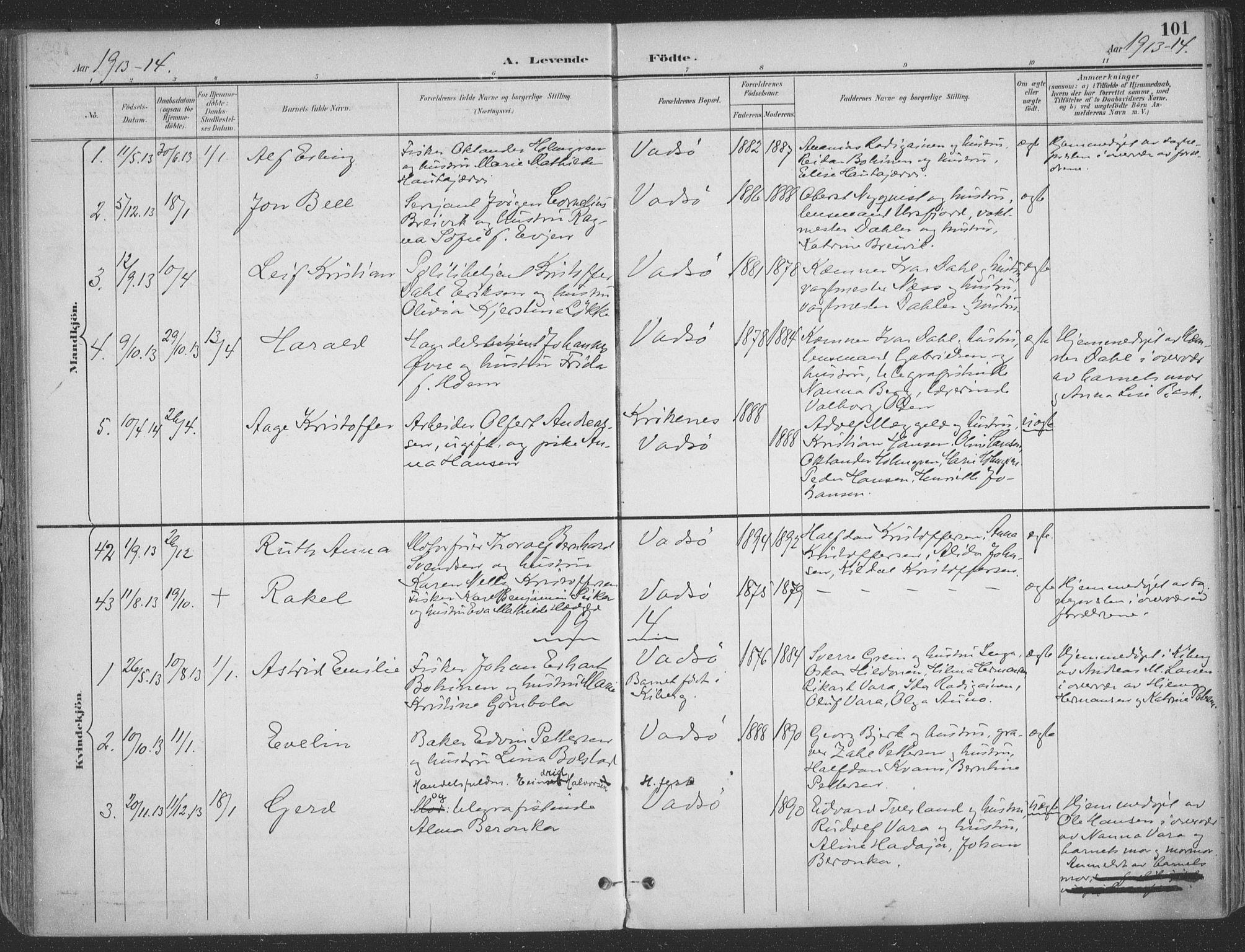 SATØ, Vadsø sokneprestkontor, H/Ha/L0007kirke: Ministerialbok nr. 7, 1896-1916, s. 101