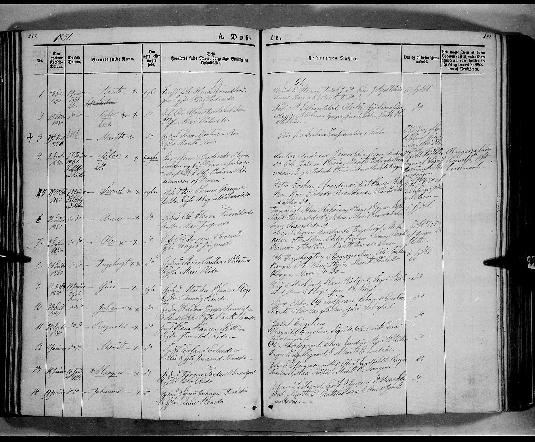 SAH, Lesja prestekontor, Ministerialbok nr. 6A, 1843-1854, s. 262-263